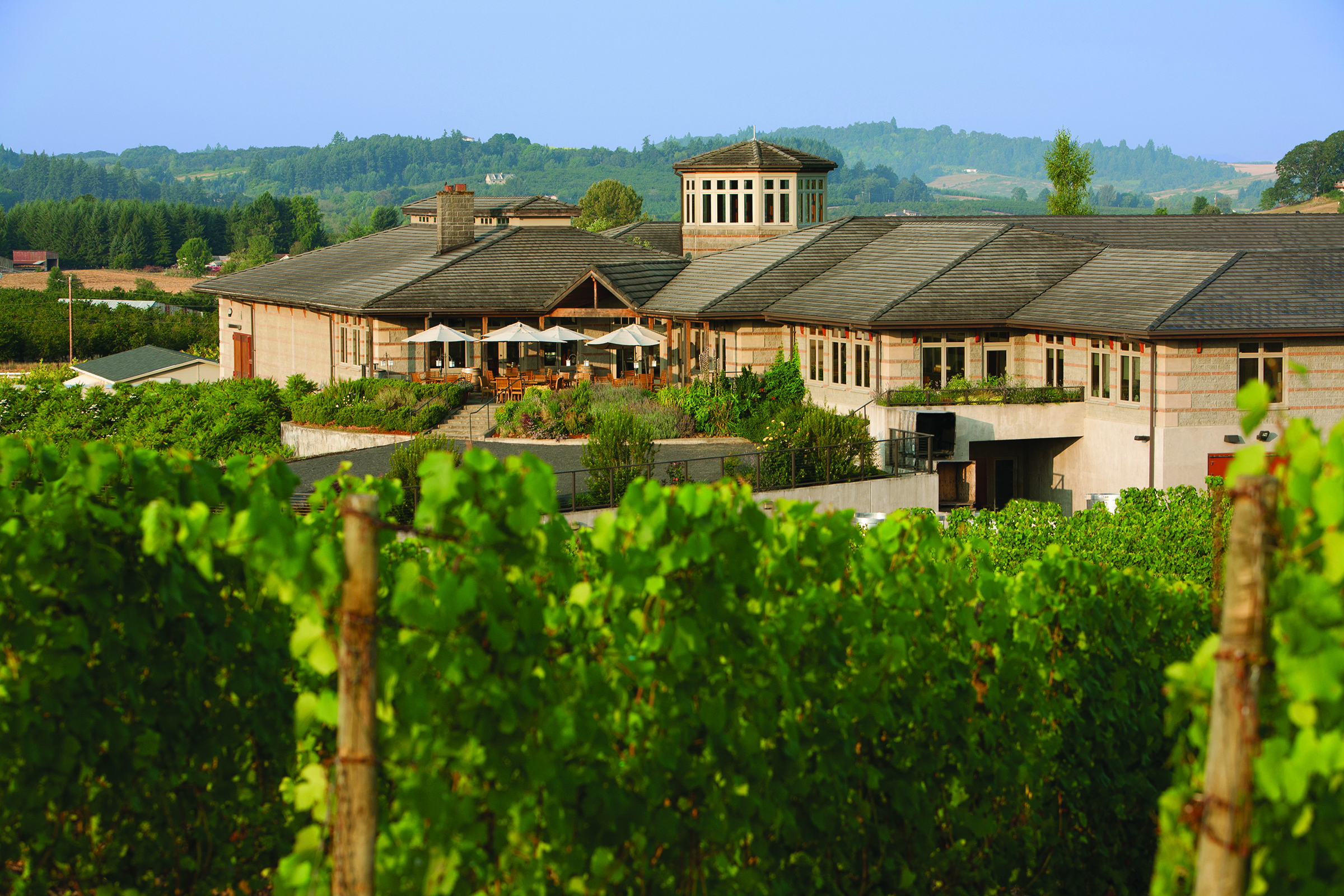 Outside view of Adelsheim Winery