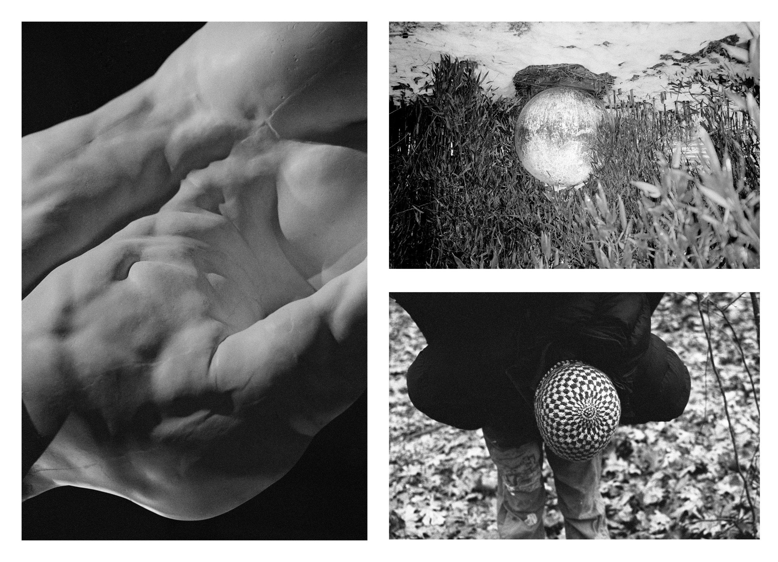 growth and orbs 2-3.jpg