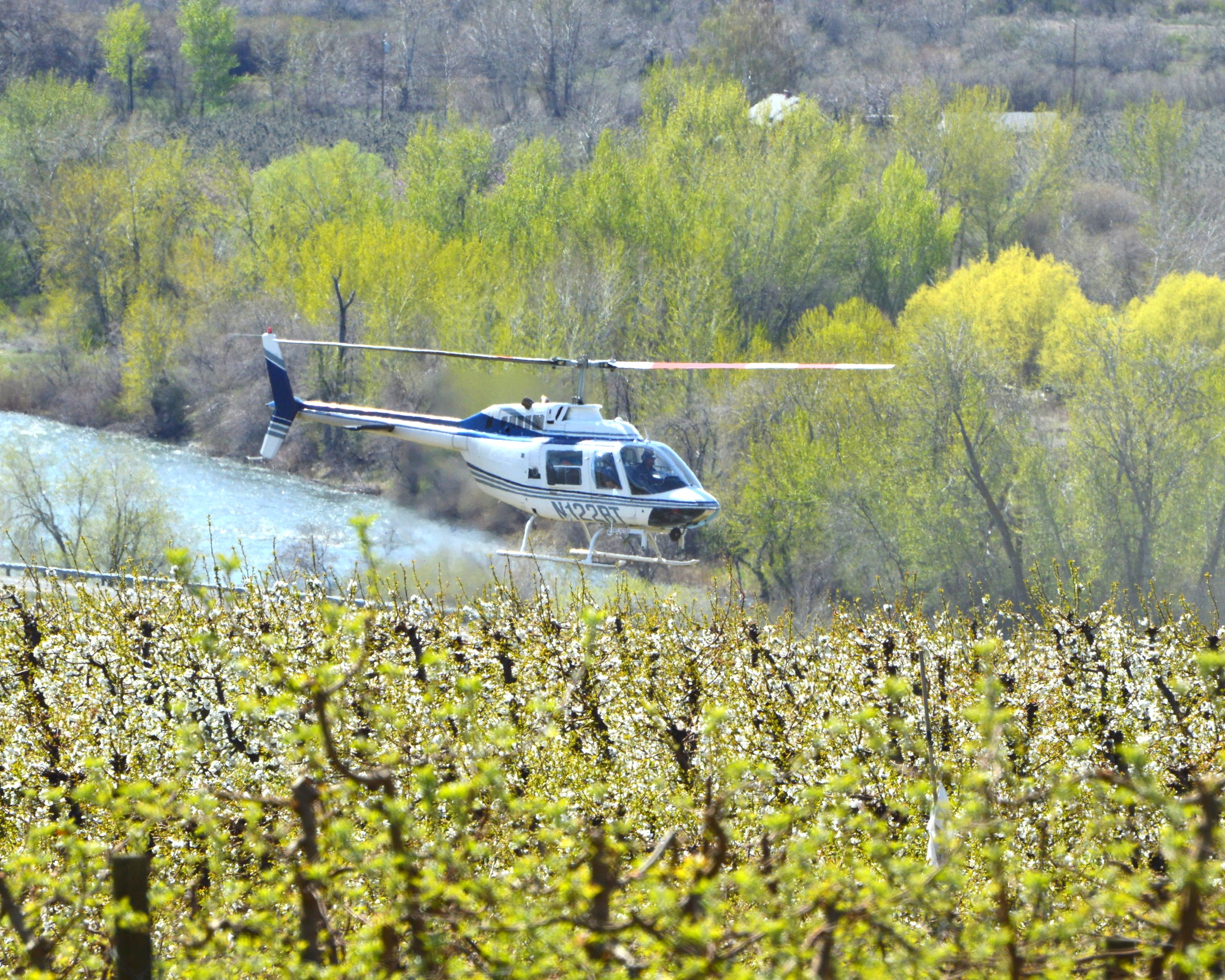 Pollen - Aircraft application is the fastest of all application methods for pollen. With aircraft application, a fixed wing aircraft or helicopter is used to carry the pollen to the orchard. It will improve set and seed set fruit size.