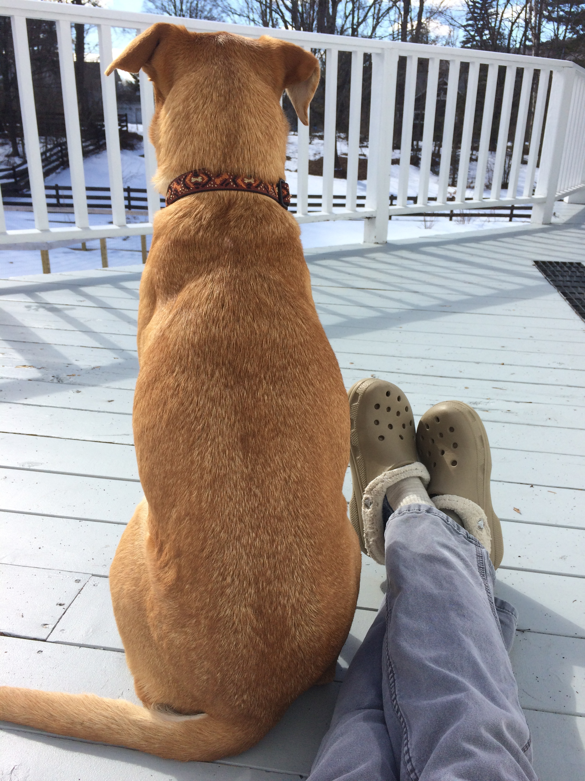 Ice baths and compression stockings are my go-tos. Walking the dog and then napping on the porch is one of my favorites too :)