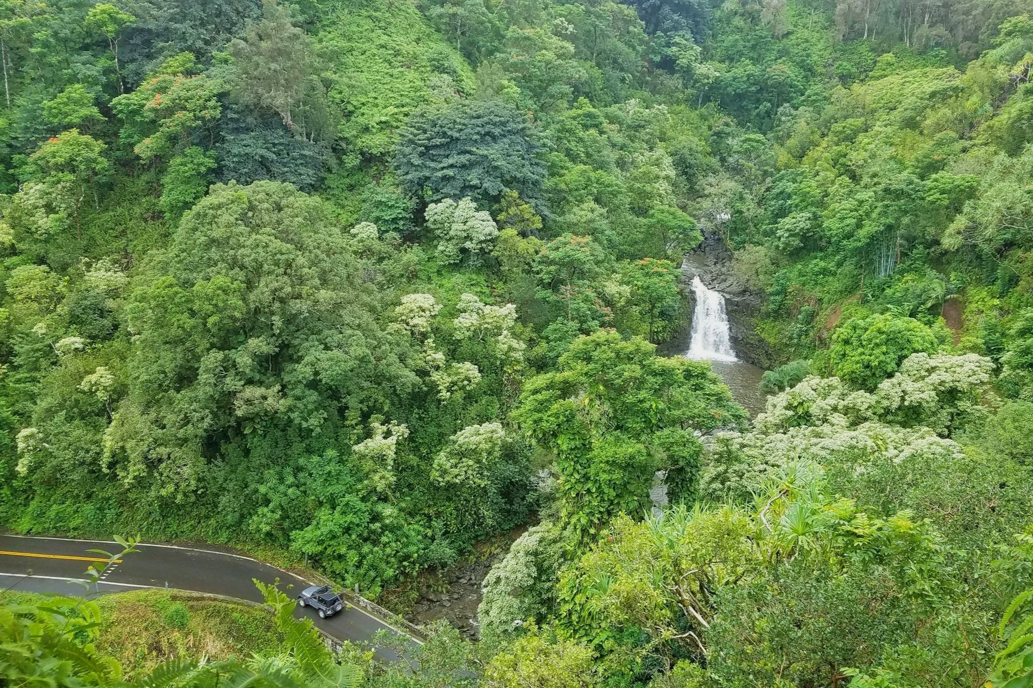 A waterfall surrounded by green rain forest on the Road to Hana tour in Maui.