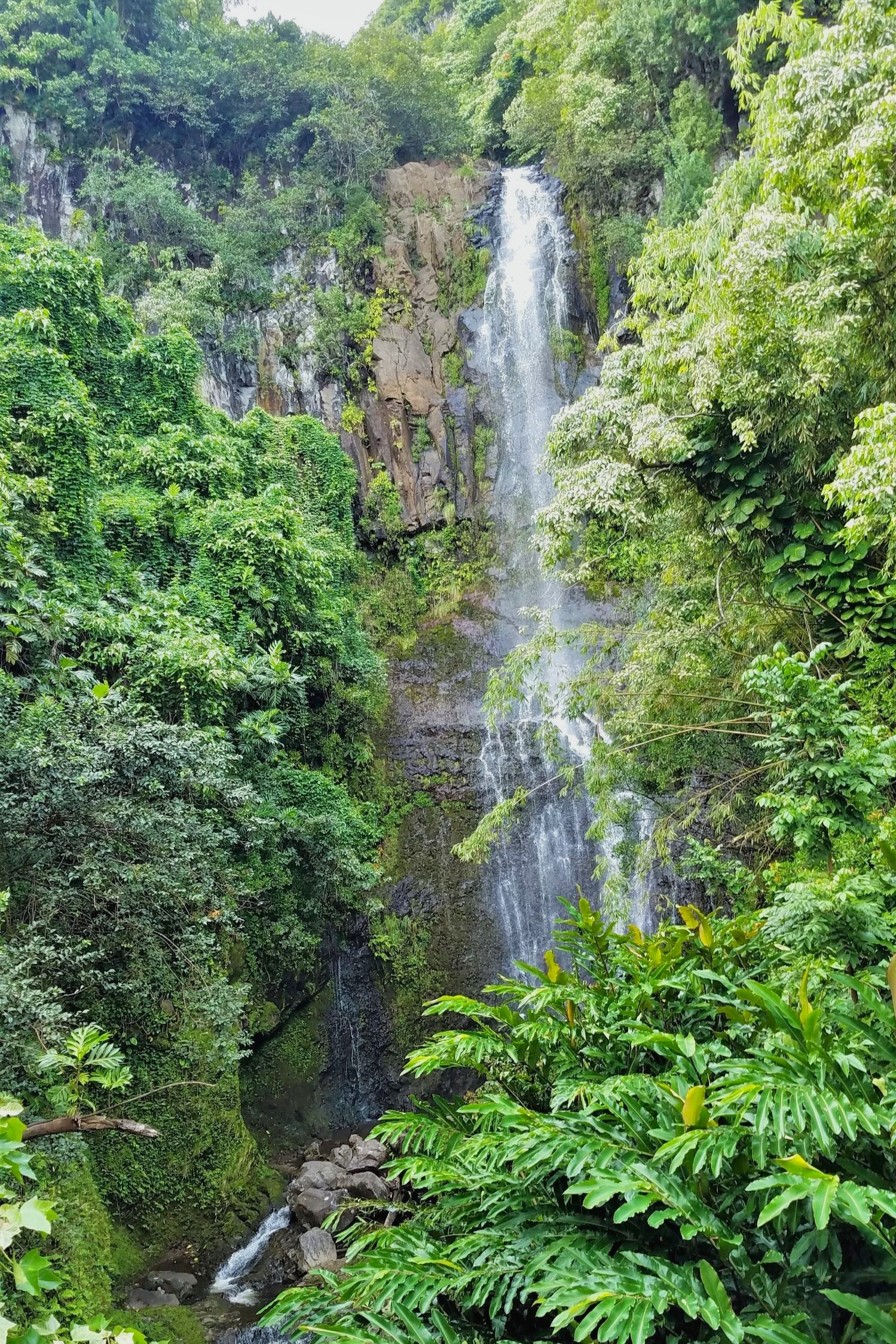 Wailua Falls running down a cliff face surrounded by greenery is one of the most popular Road to Hana waterfalls.