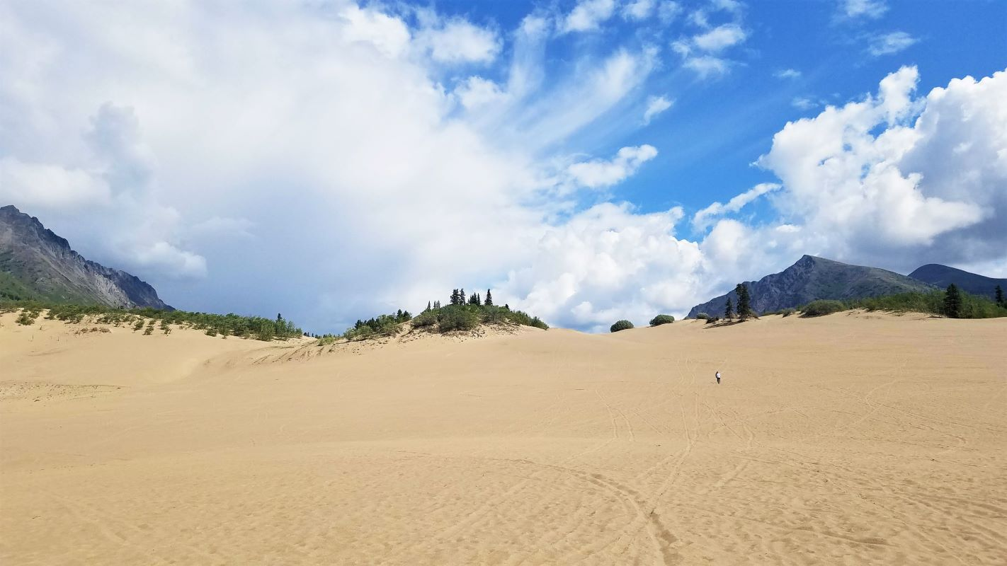 The sweeping sand of Carcross, the smallest desert in the world, with mountain tops in the background.