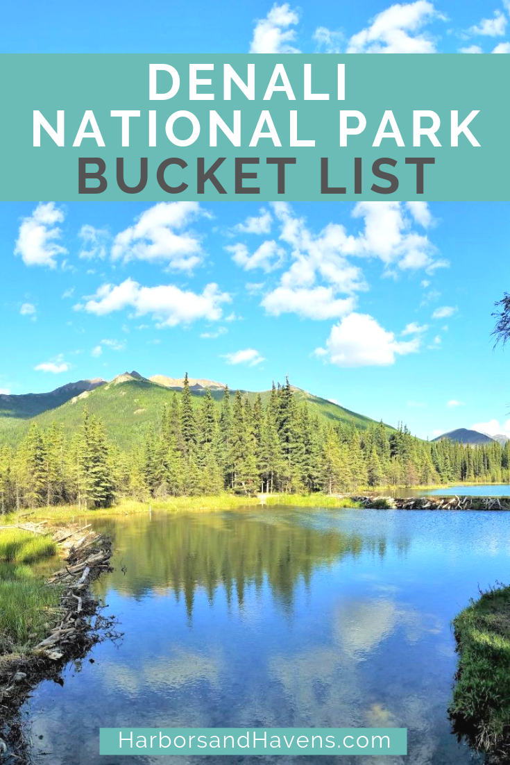 Wondering what to do in Denali National Park on your first visit? This bucket list for Denali will give you ideas for the best trails, tours and scenic spots. USA #Denali #Alaska #DenaliNationalPark | What to see in Denali | Denali National Park summer | Pictures of Denali National Park | Denali National Park Camping | Denali National Park tips | Denali National Park hiking | Denali National Park Alaska