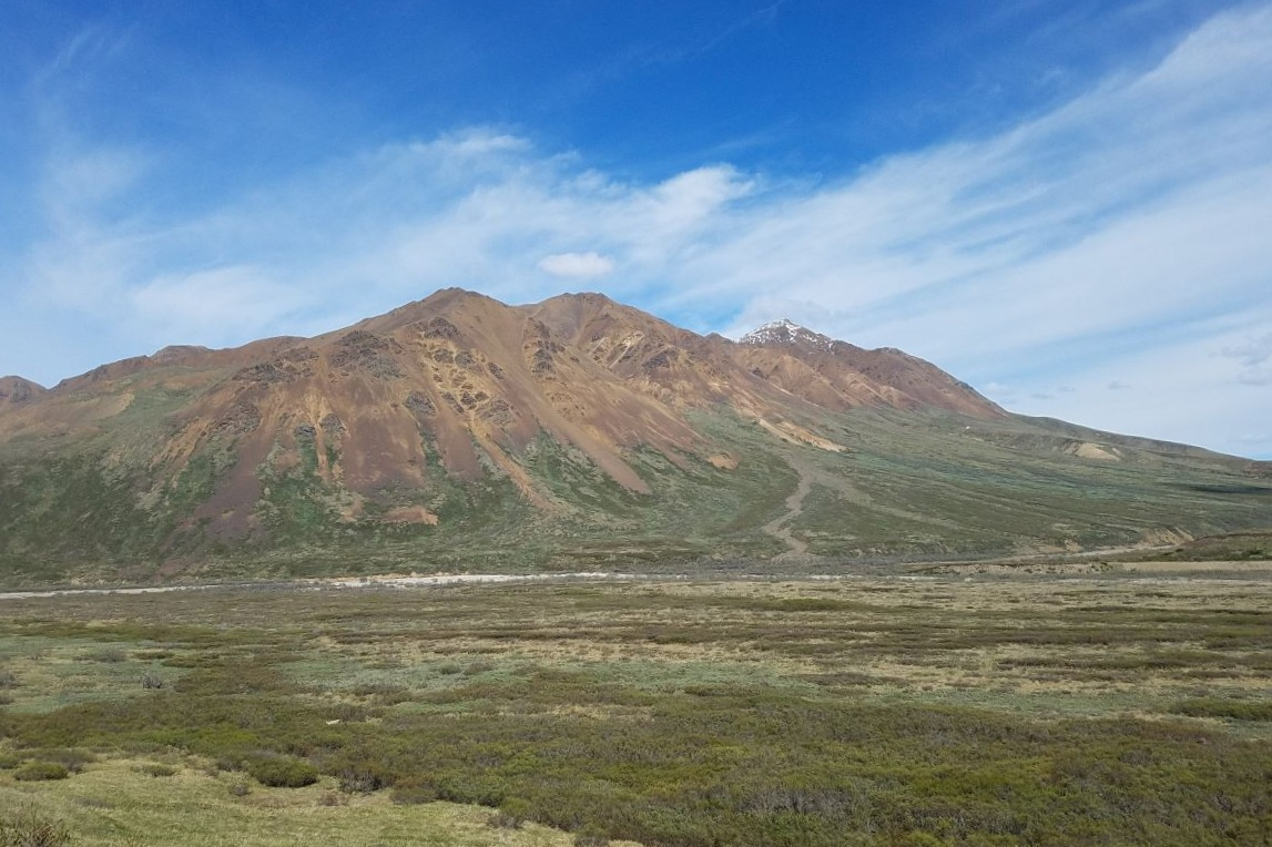 A mountain in Denali National Park under blue skies with sweeping grasslands in front.