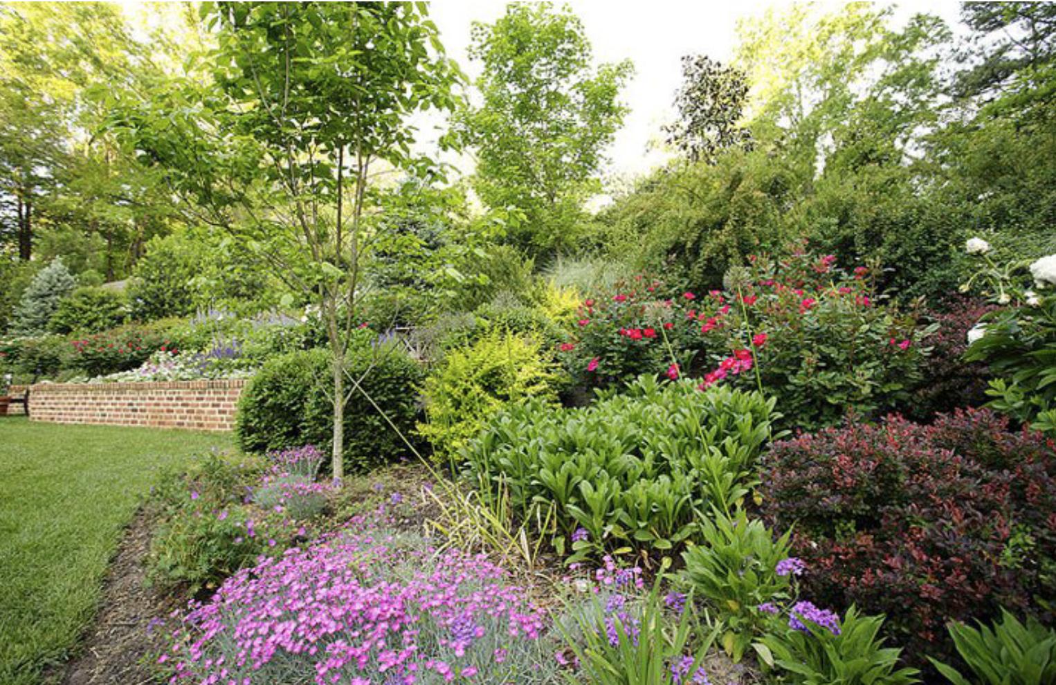 Marcia Fryer Landscape Designs | Child Friendly Backyard | Perrenials.png