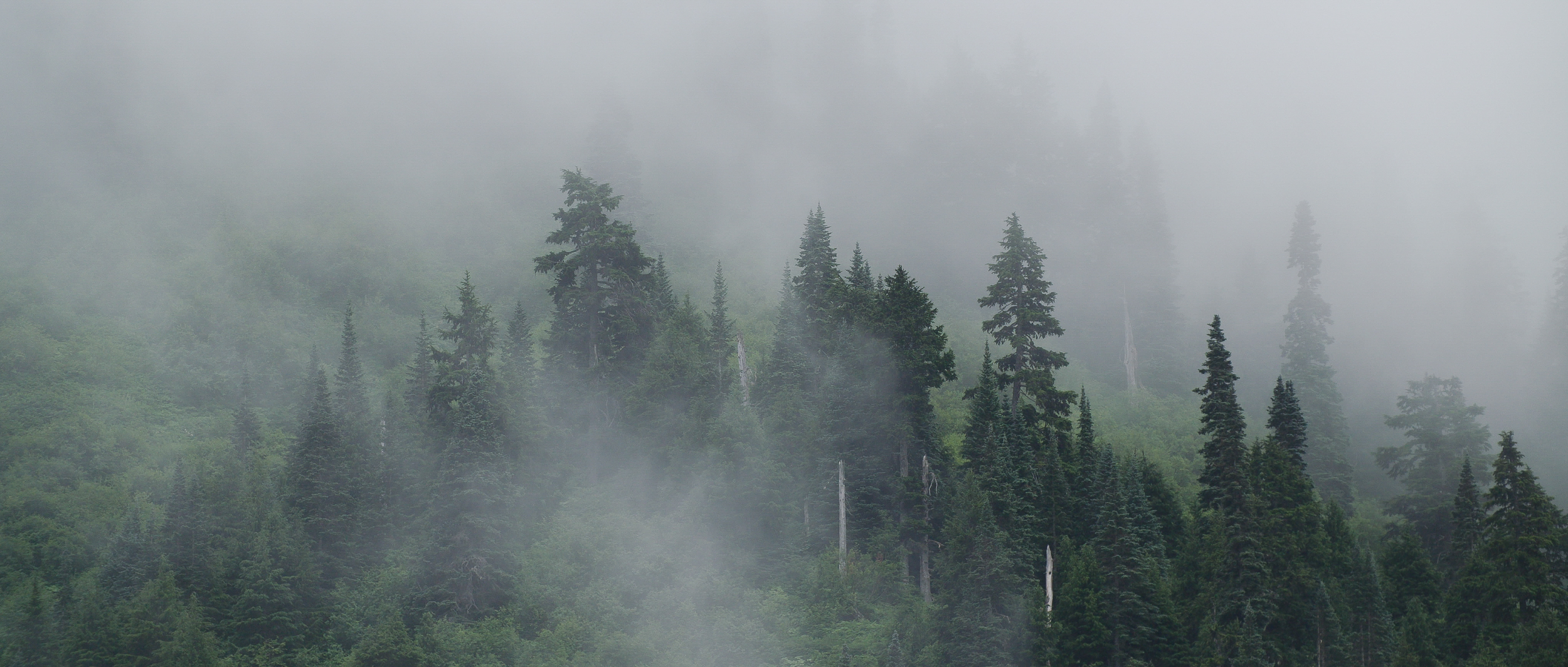 North to Alaska-2.jpg