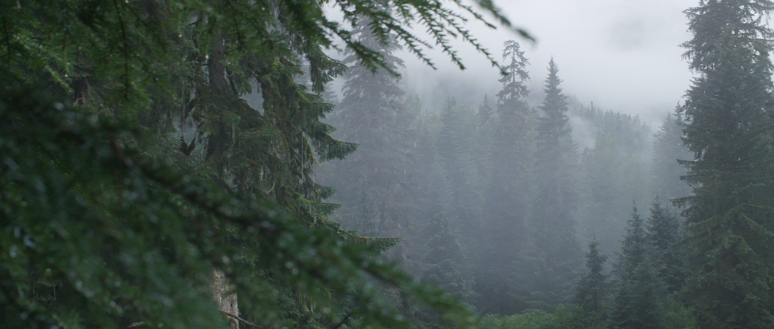 North to Alaska-12.jpg