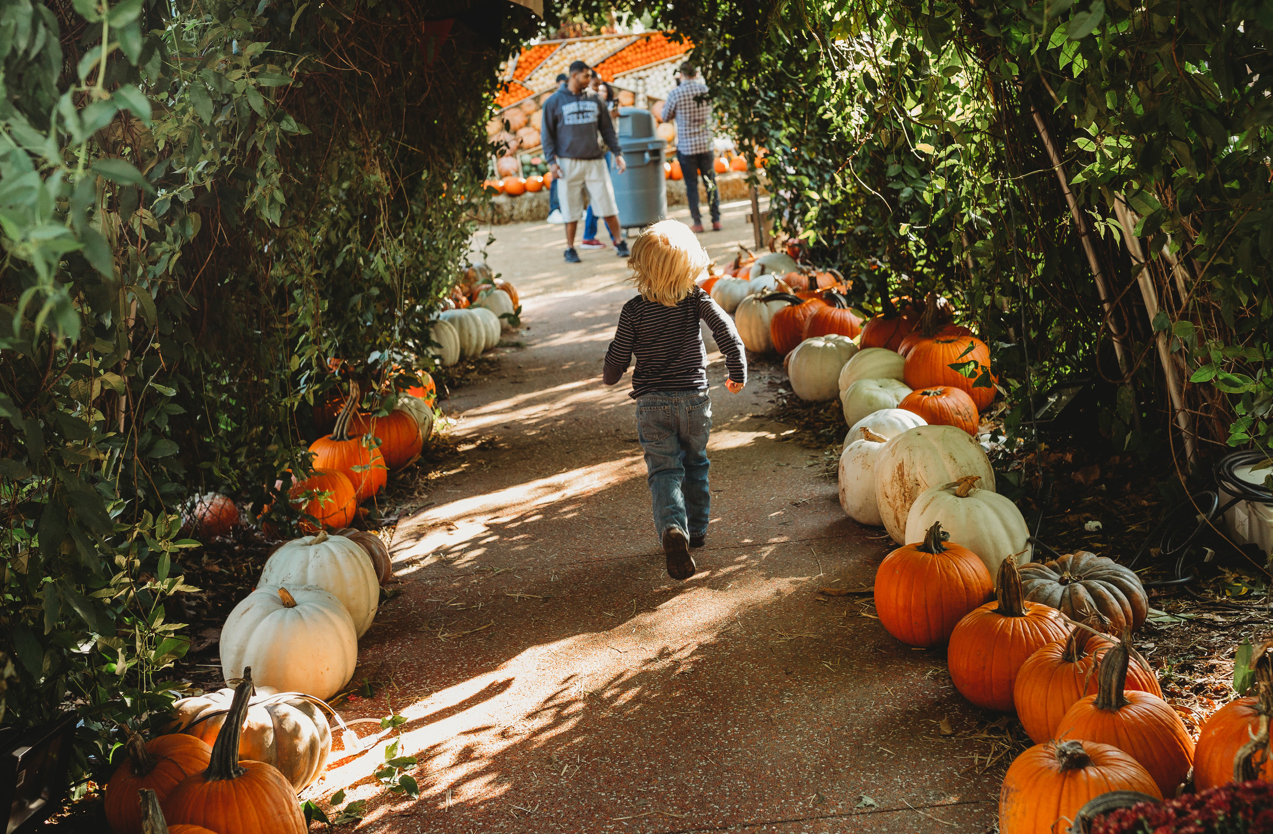 documentary lifestyle family photo session child running through pumpkin patch Ore Adesina Photography Oklahoma City