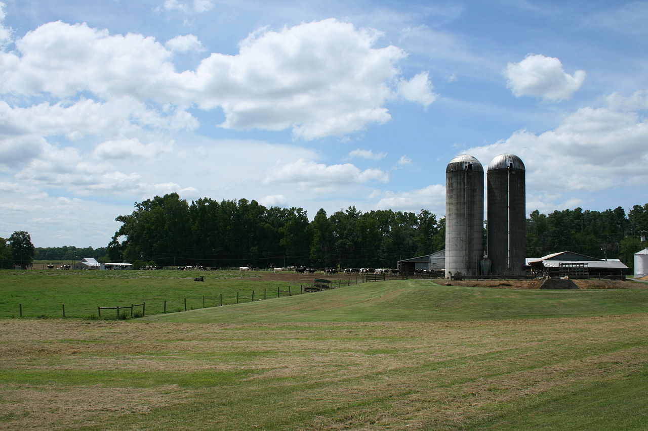 A family-owned farm in rural North Carolina ( source )