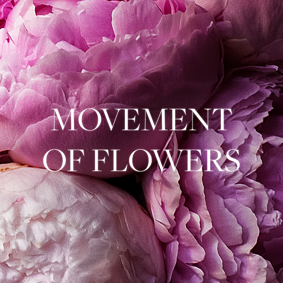 Movement of flowers.png