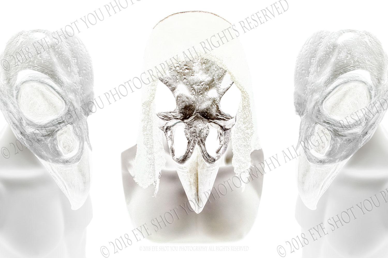 Art Vultures X #1