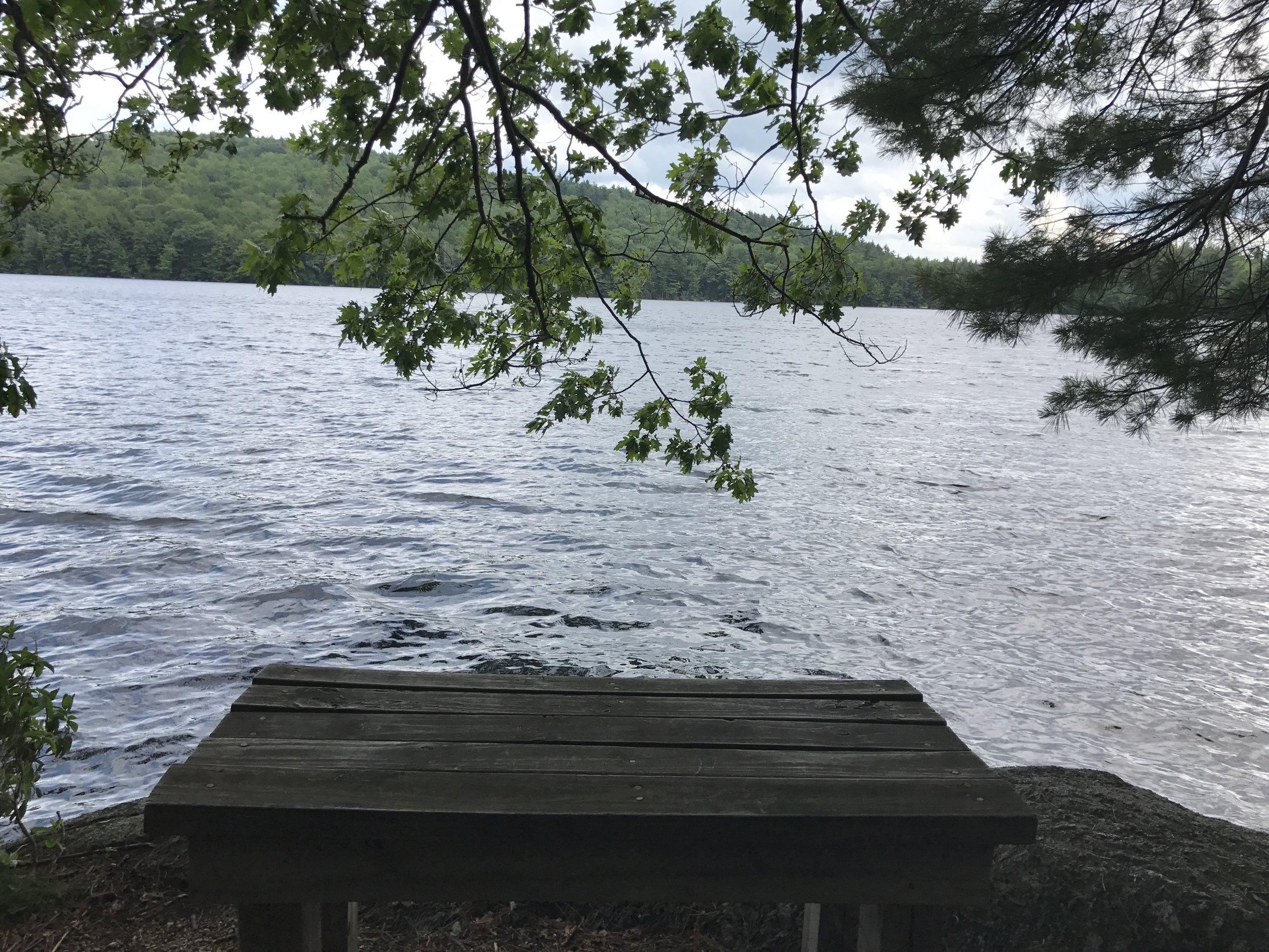 Willard Pond  in Antrim, NH