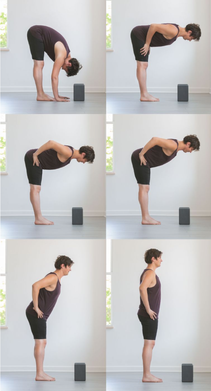 ayurvedic-yoga-practice-reno.png