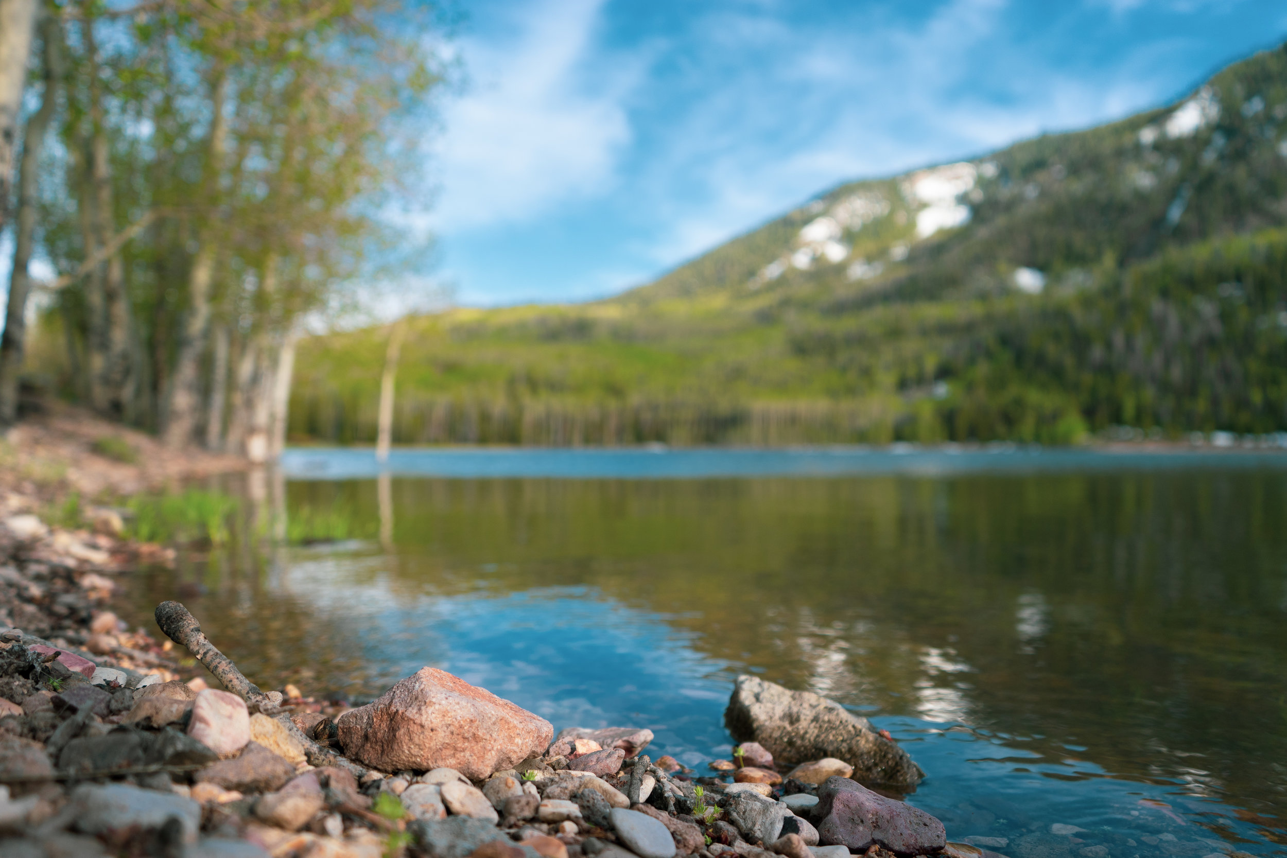 Photo Collection - Fishlake national forest