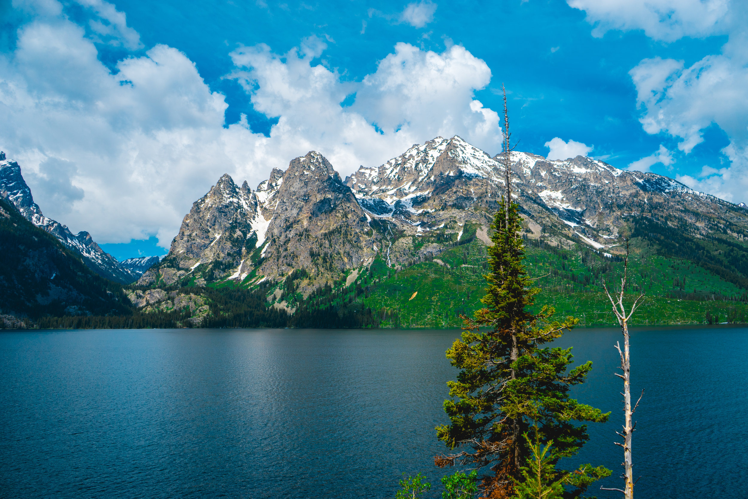 Photo Collection - Grand Teton National Park