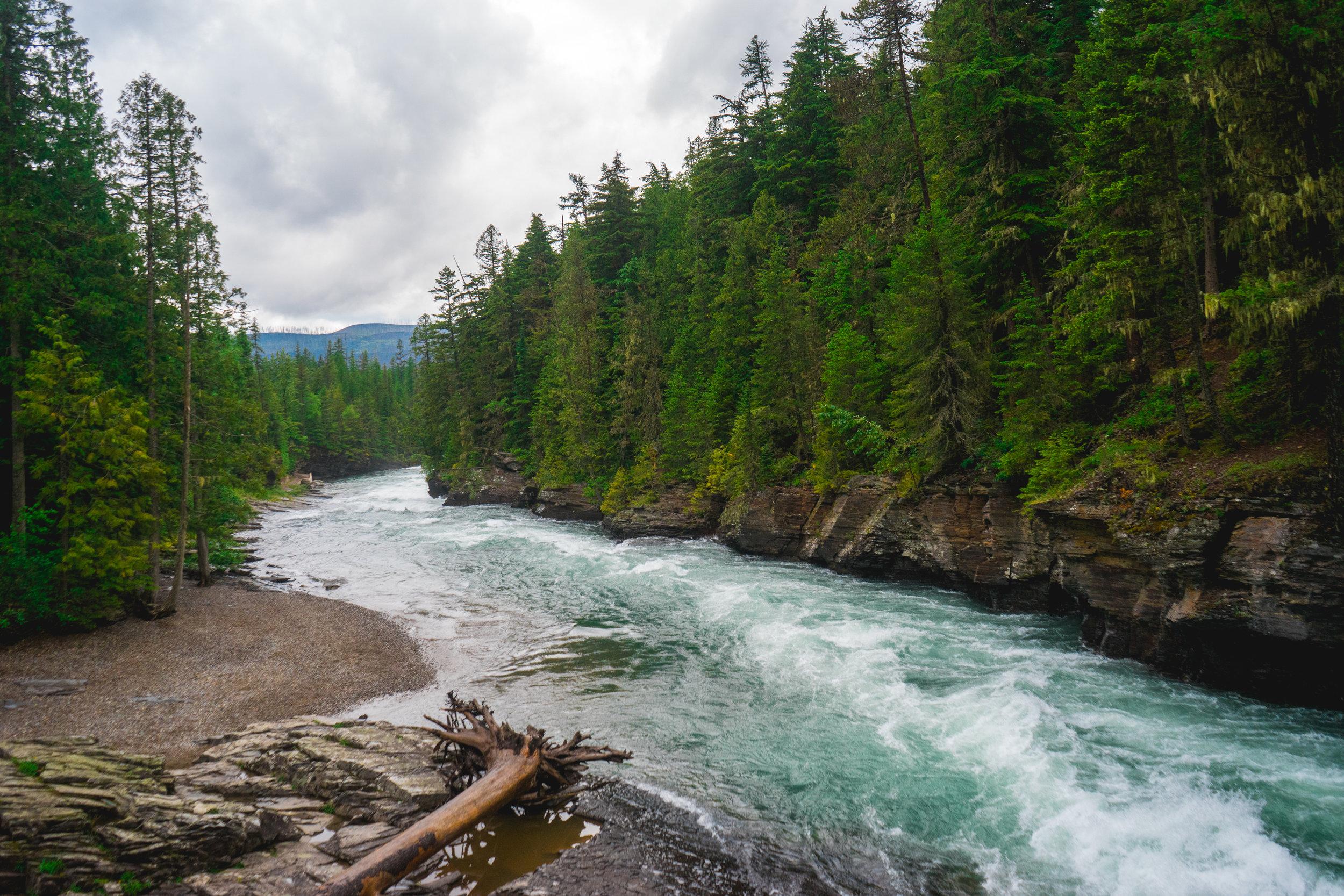 Photo Collection - Glacier National Park