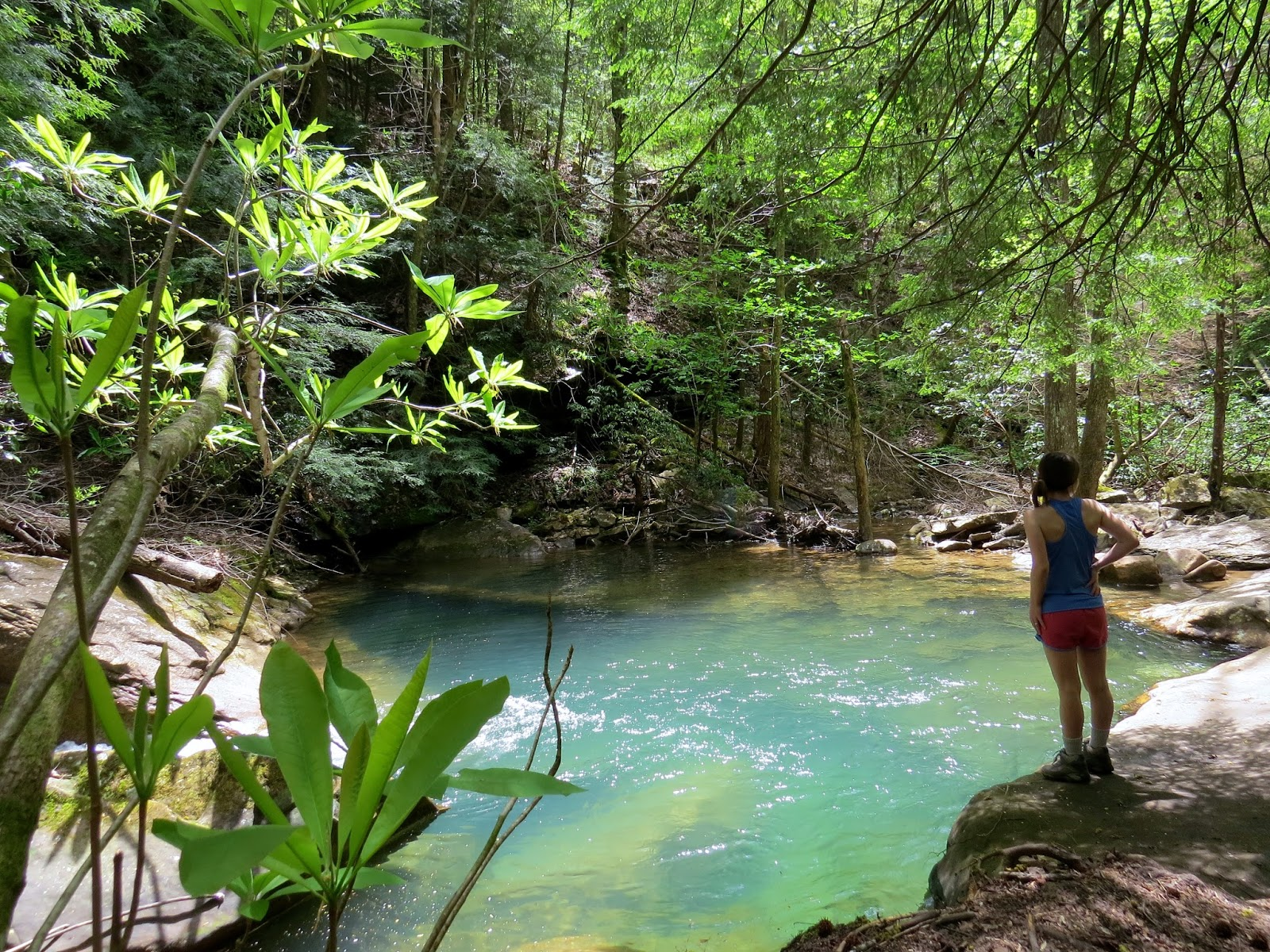 My favorite swimming hole I've ever seen! Look at the color of that water <3