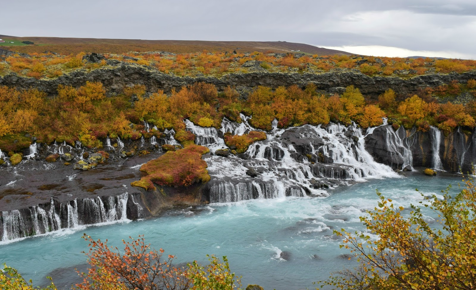 Hraunfossar (water runs out of lava fields and thats why the water underneath is so crystal clear!)