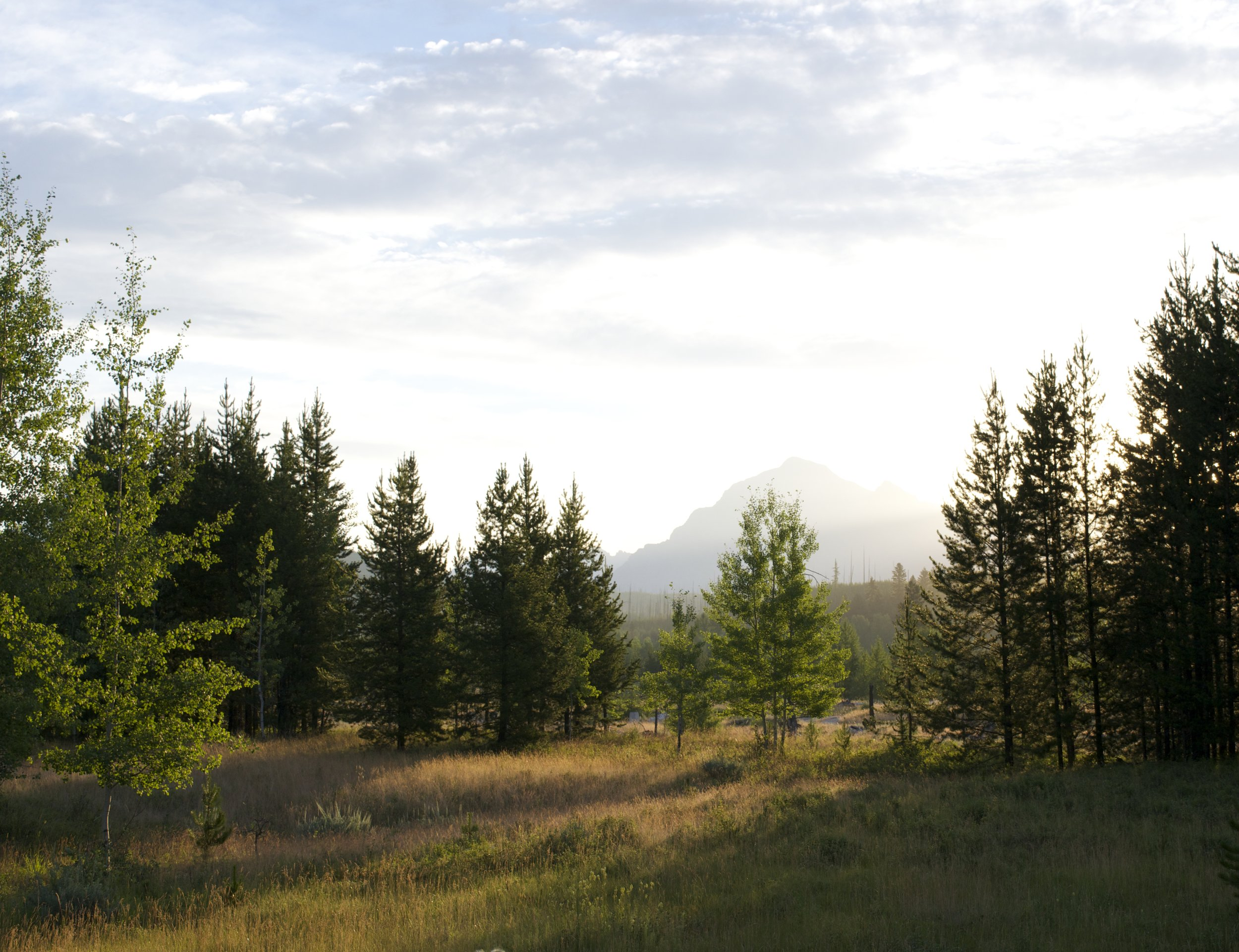 View from our cabin in Polebridge, minus a few of the mountains because I blew out the picture.