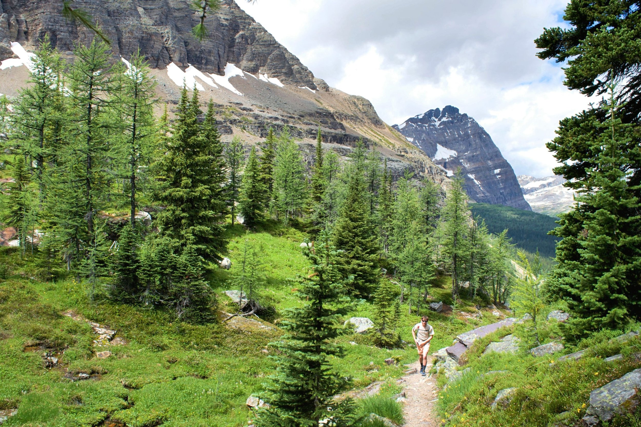 Hiking up into Opabin Pass