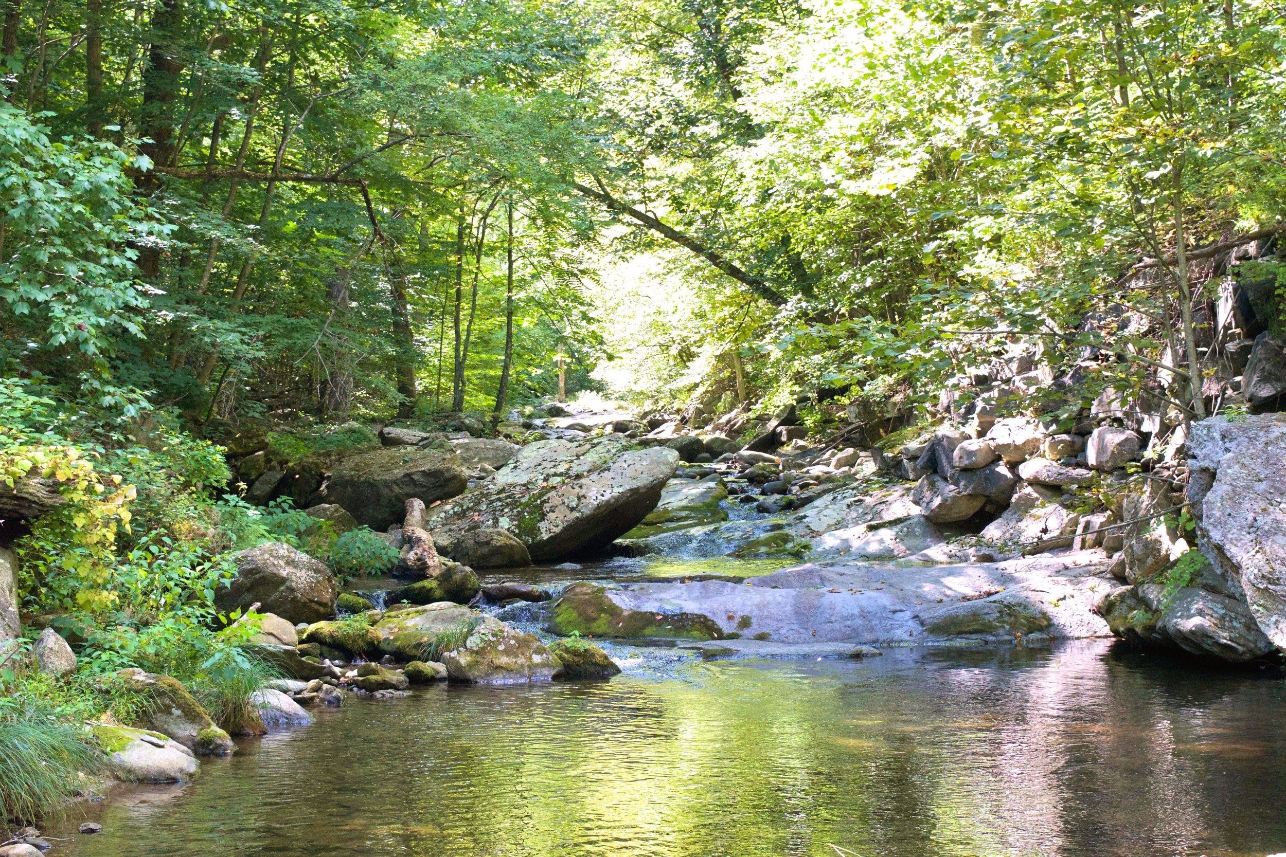 A really pretty swimming hole high on the Rapidan River, taken while fly fishing a few weeks ago.