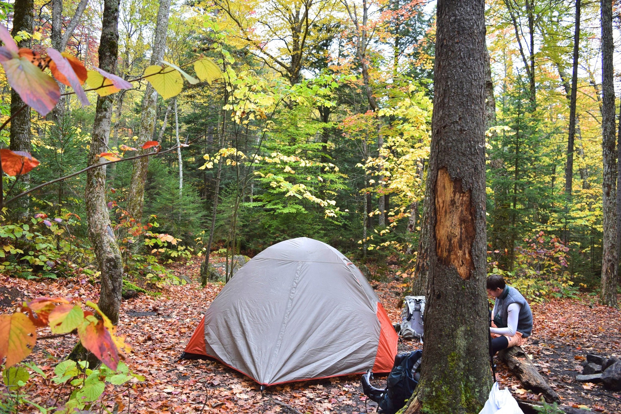 Our campsite right beside the creek.