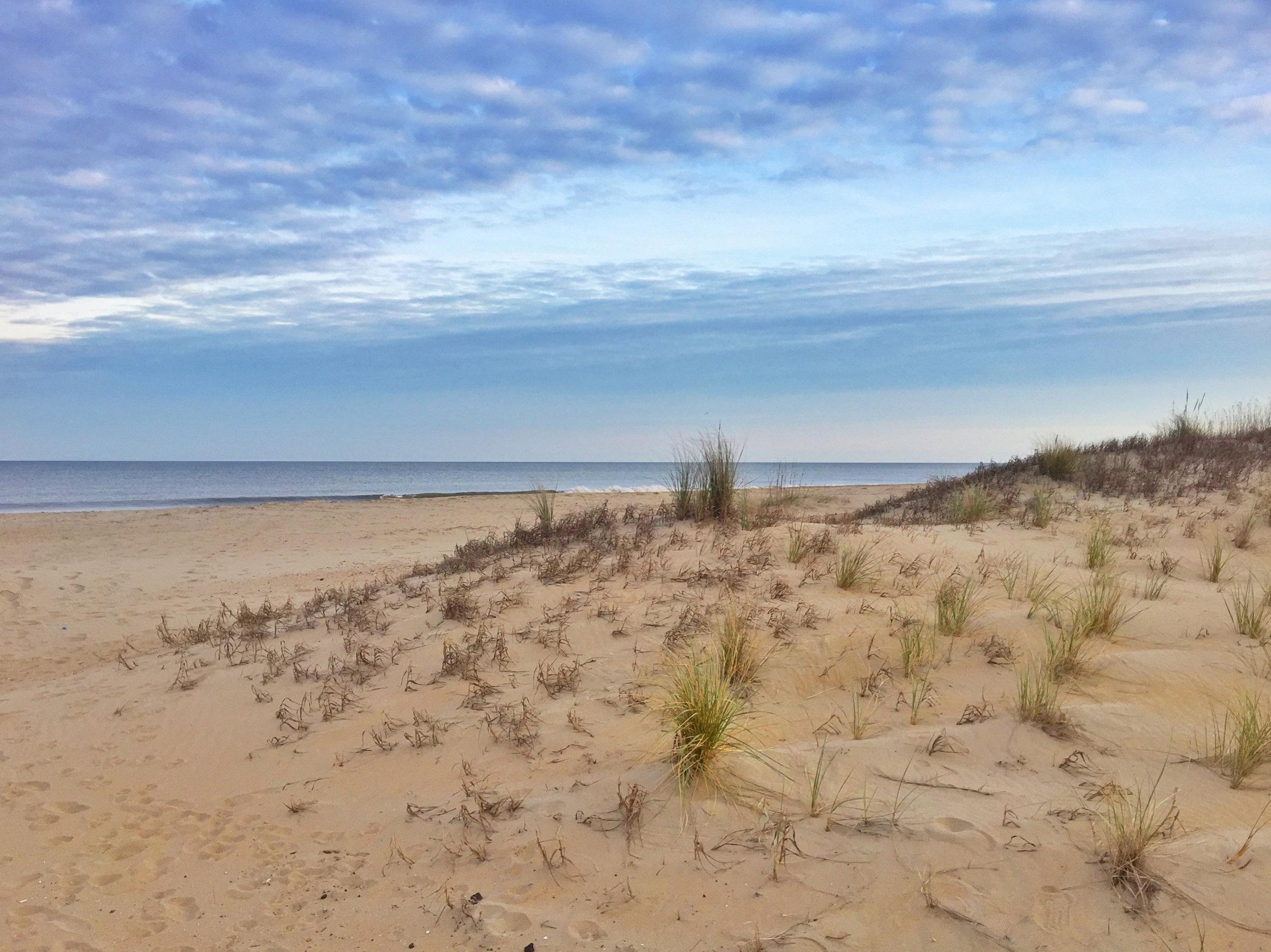 Beach walks!