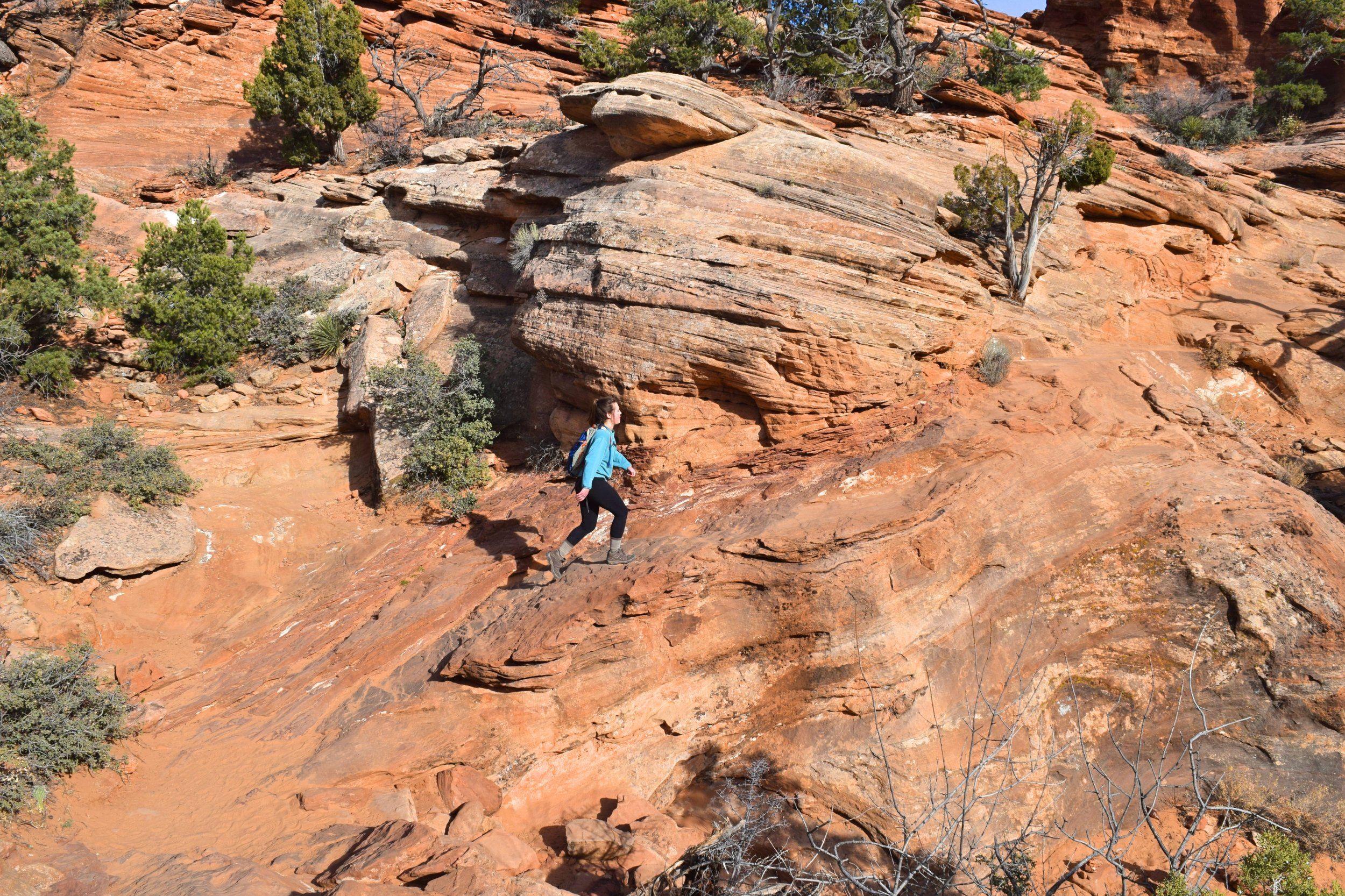 Canyon Overlook Trail, Zion National Park, Utah