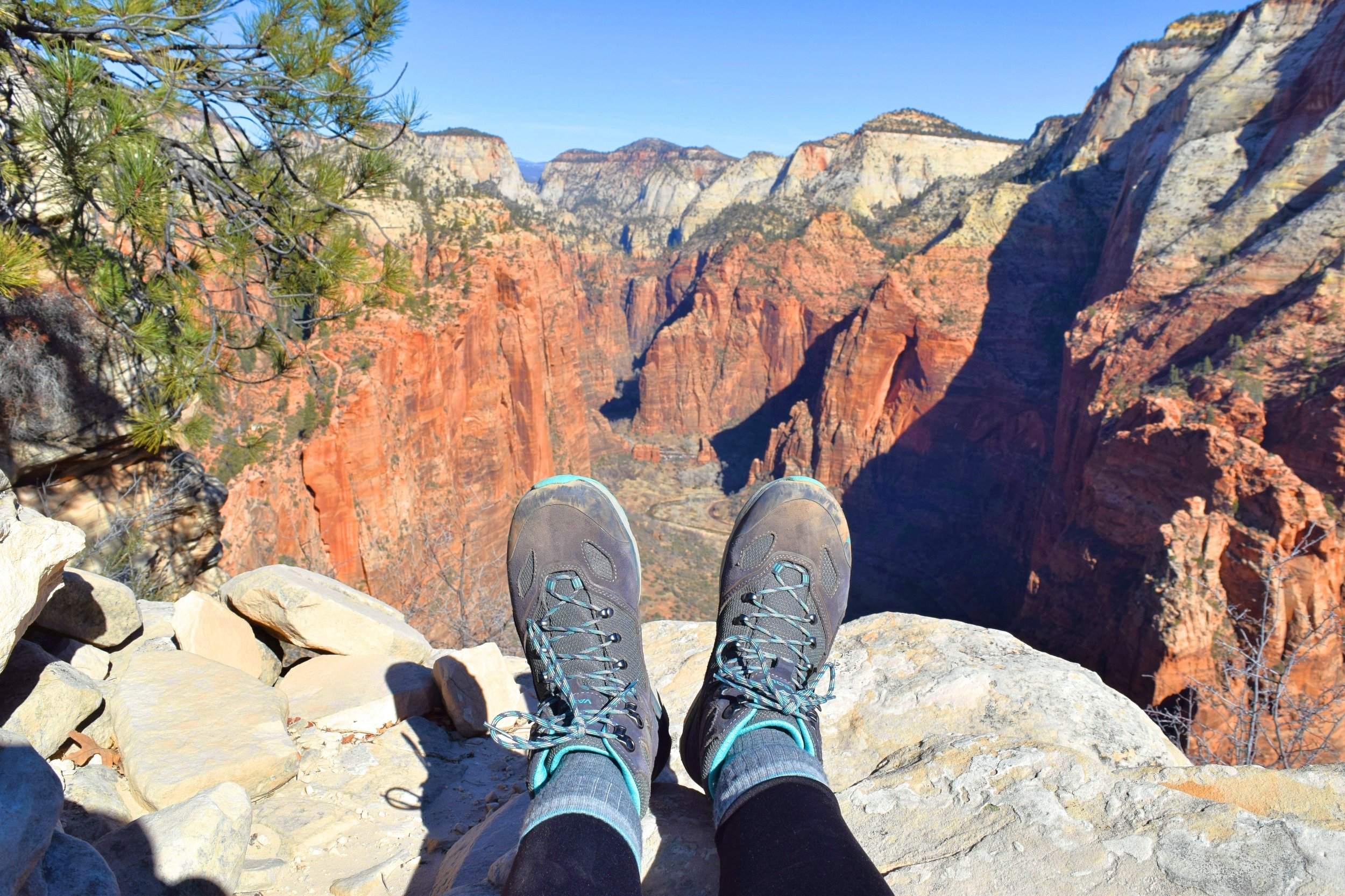 The view from Angels Landing looking north