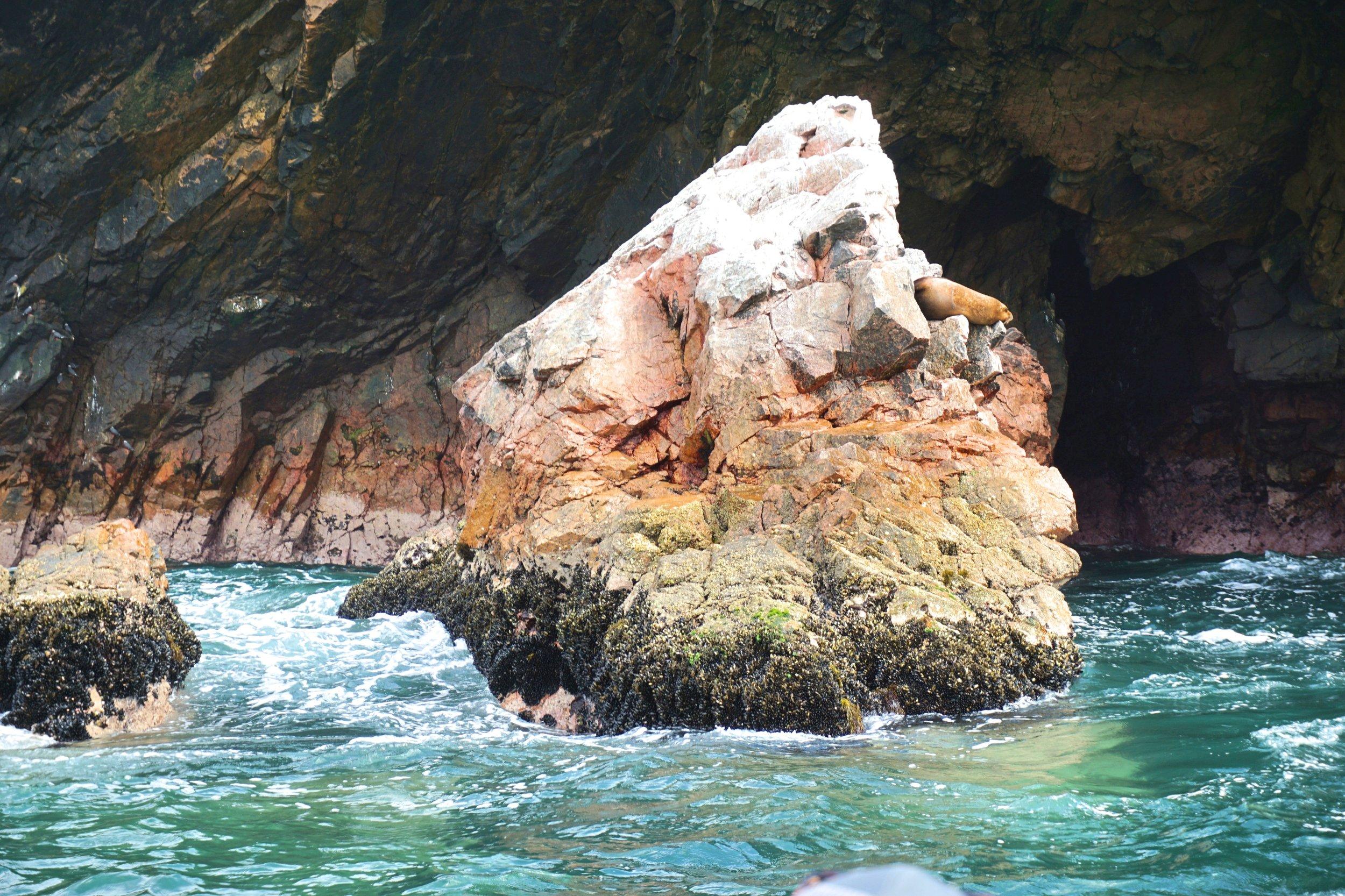 Ballestas Islands 1.jpg