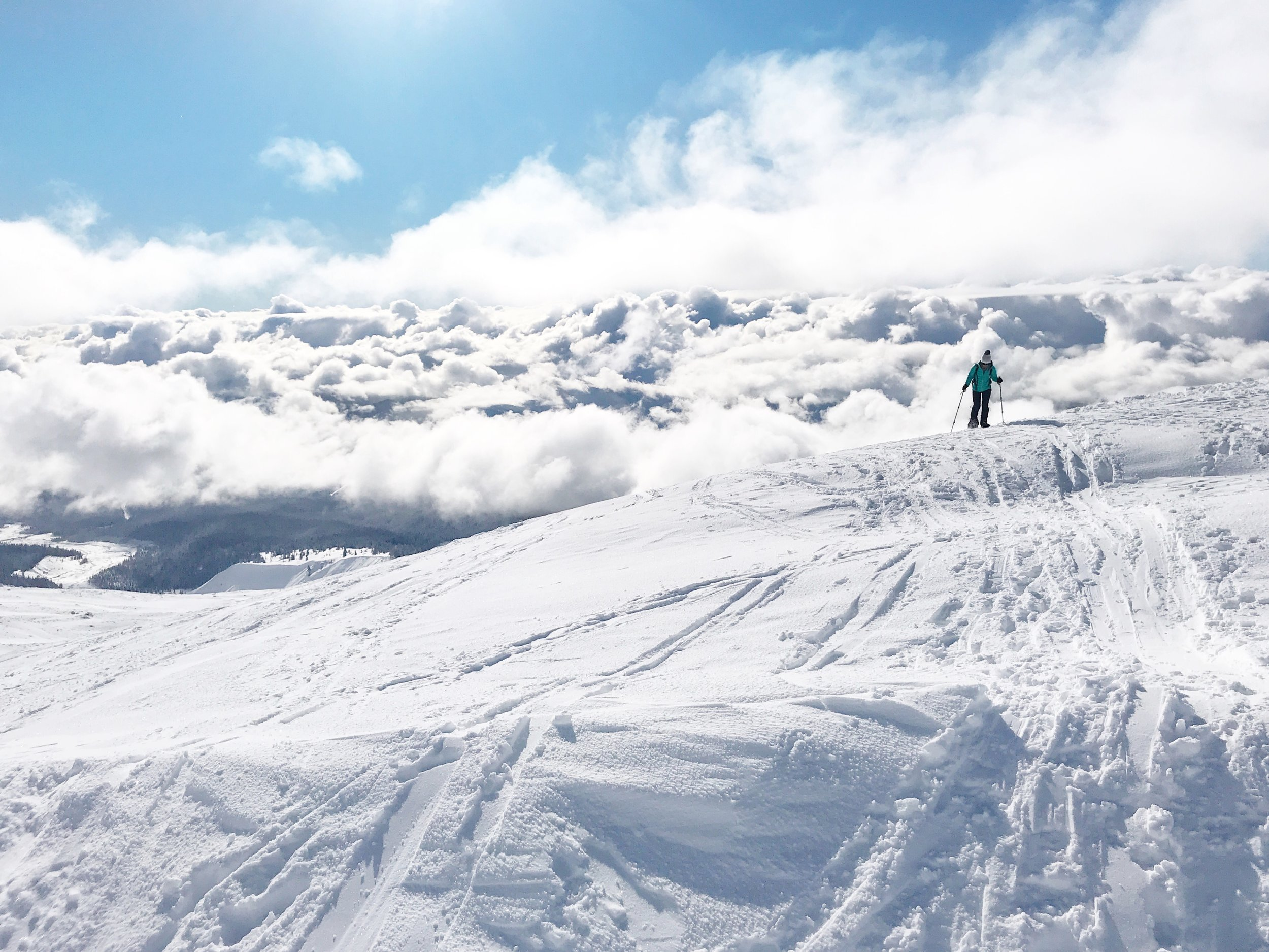 Snowshoeing+on+Mount+Hood.jpeg