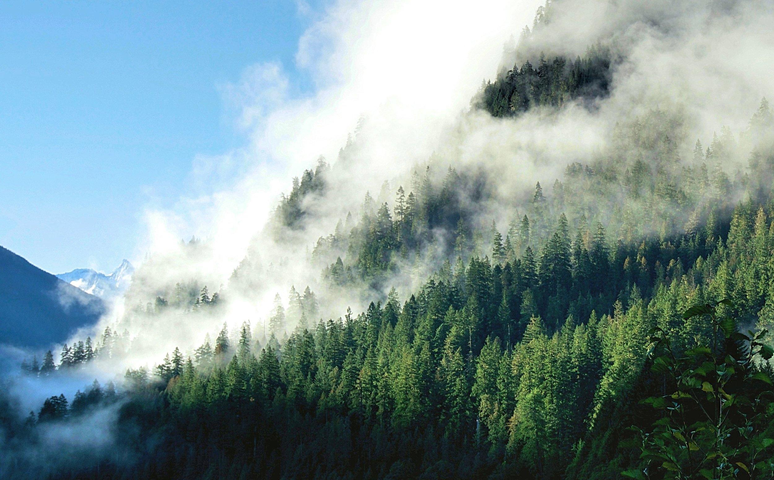 Diablo+Lake,+North+Cascade+National+Park (3).jpeg
