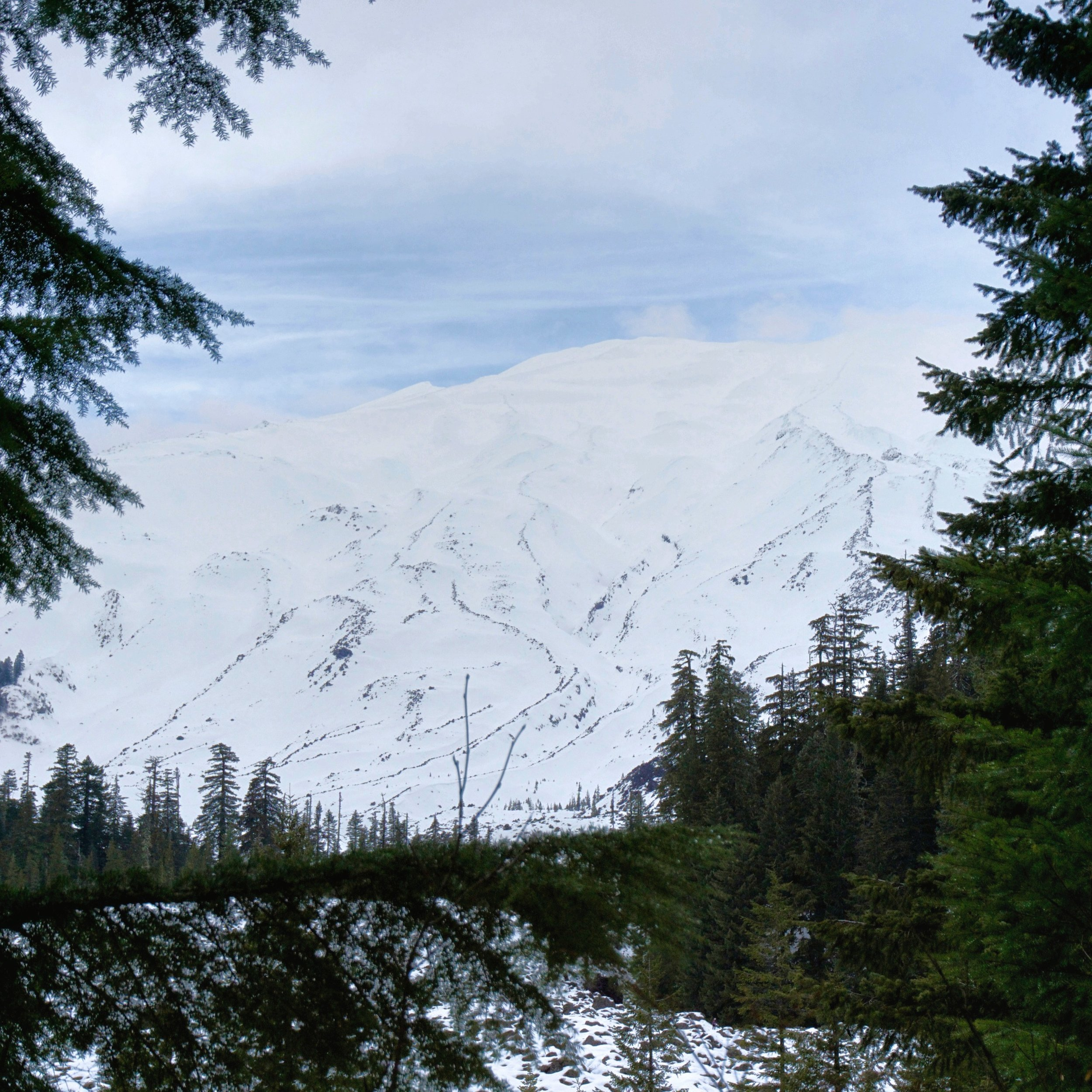 Peep part of Mount St. Helens covered in snow!