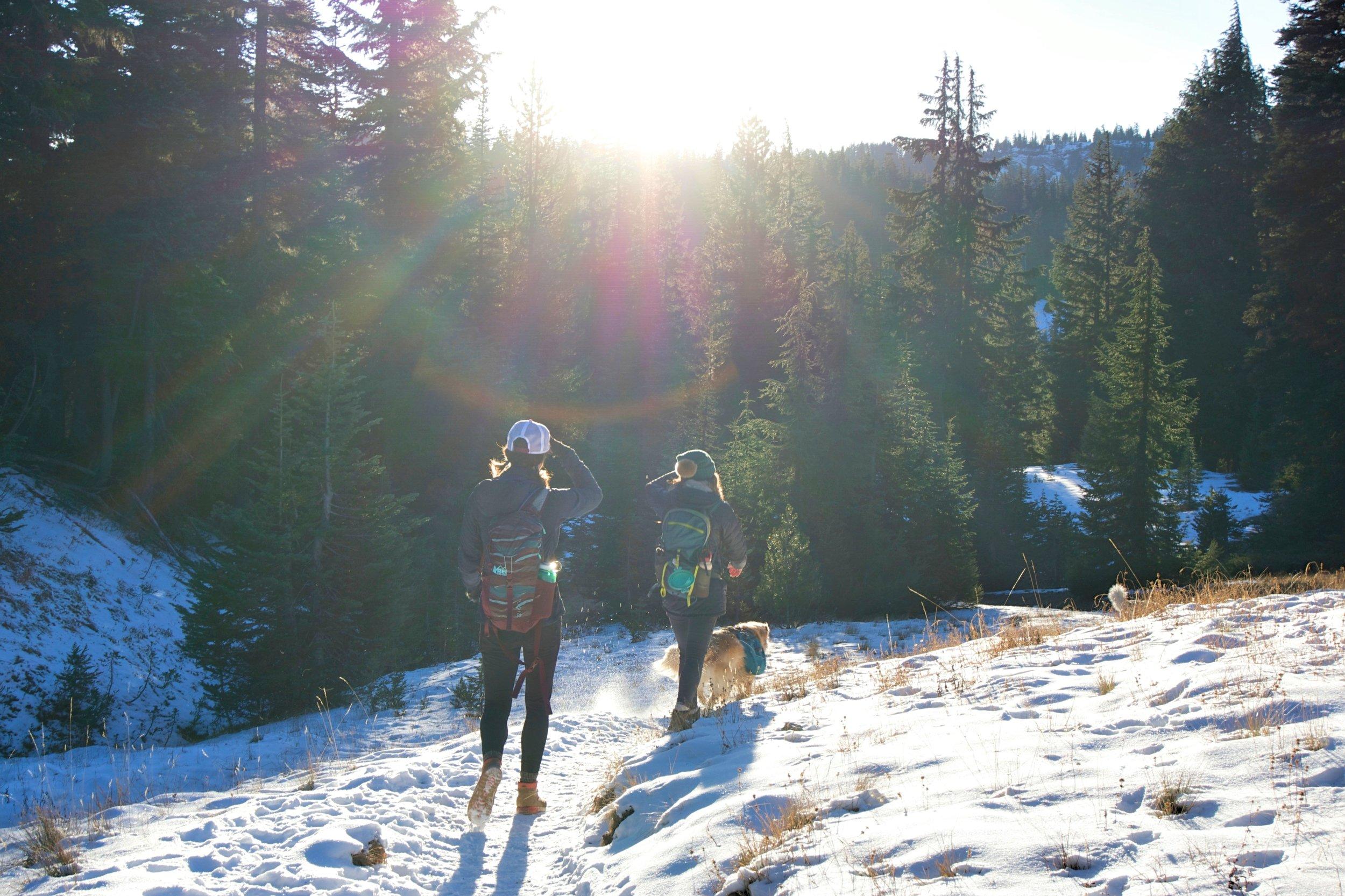 Green Lakes Hike, Oregon
