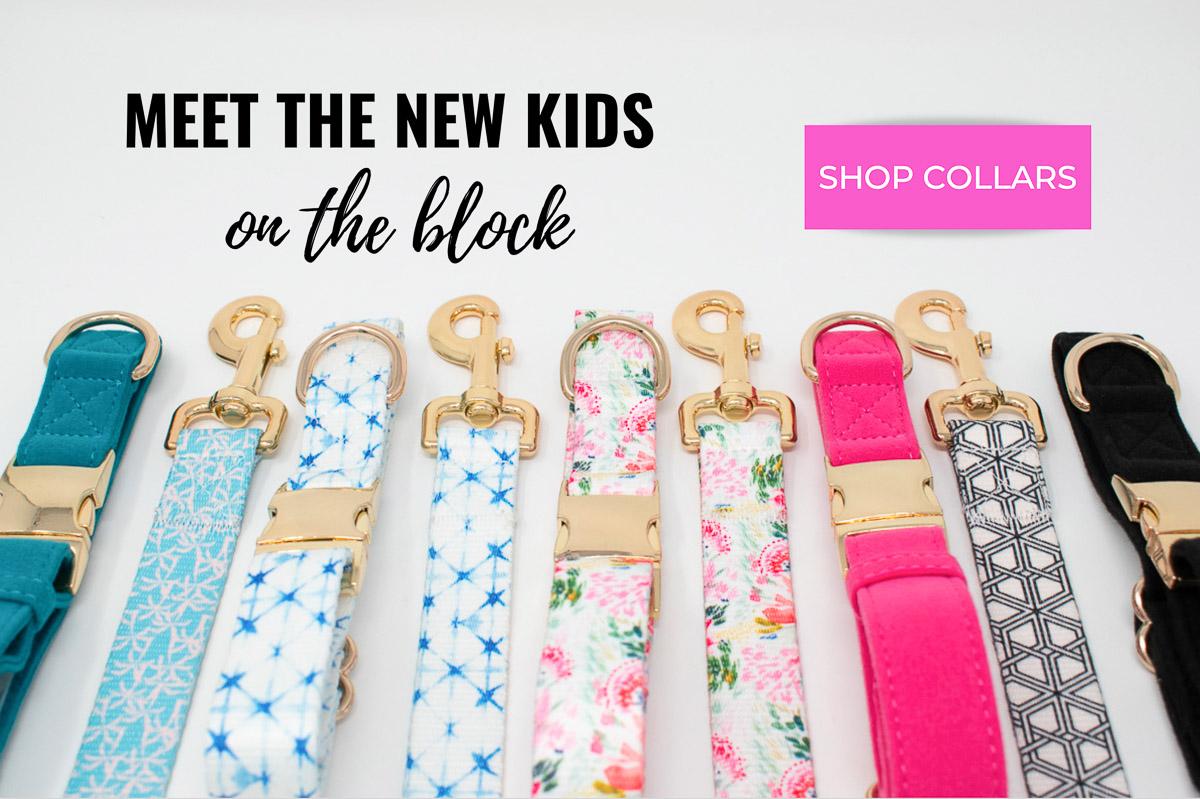 New Kids 4.jpg