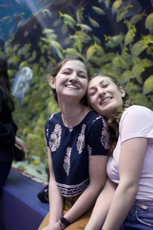 Georgia Aquarium, 2017.  Chorus