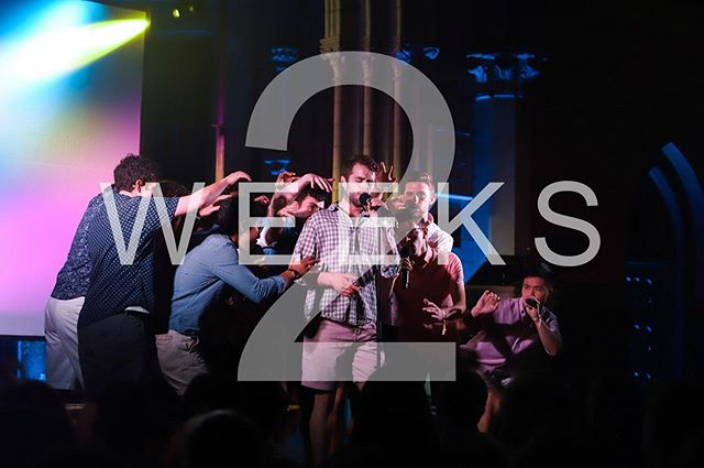 Get ready! We are two weeks from Hangovers auditions and one week from Glee Club auditions! Also, we can neither confirm nor deny that a new video is coming out soon 🤫  www.singatcornell.com www.gleeclub.com www.hangovers.com