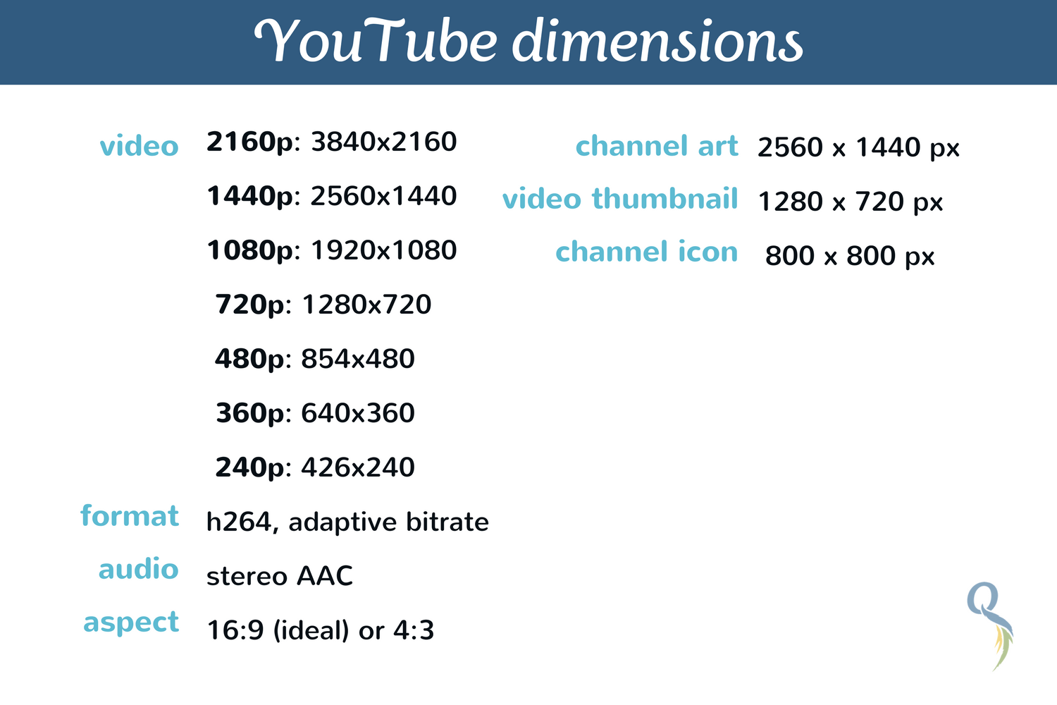 youtube dimensions.png