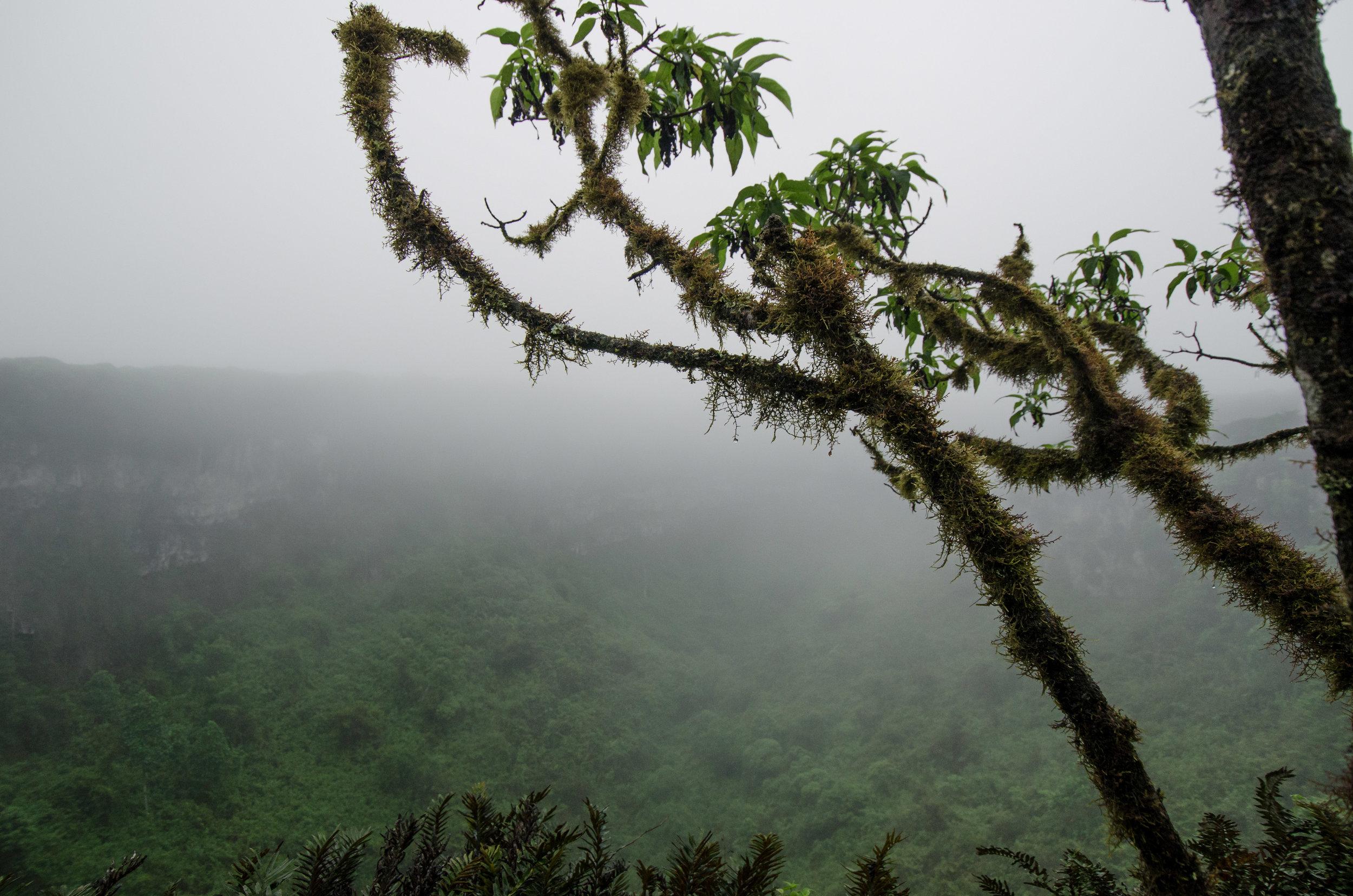 Ecuador-21.jpg