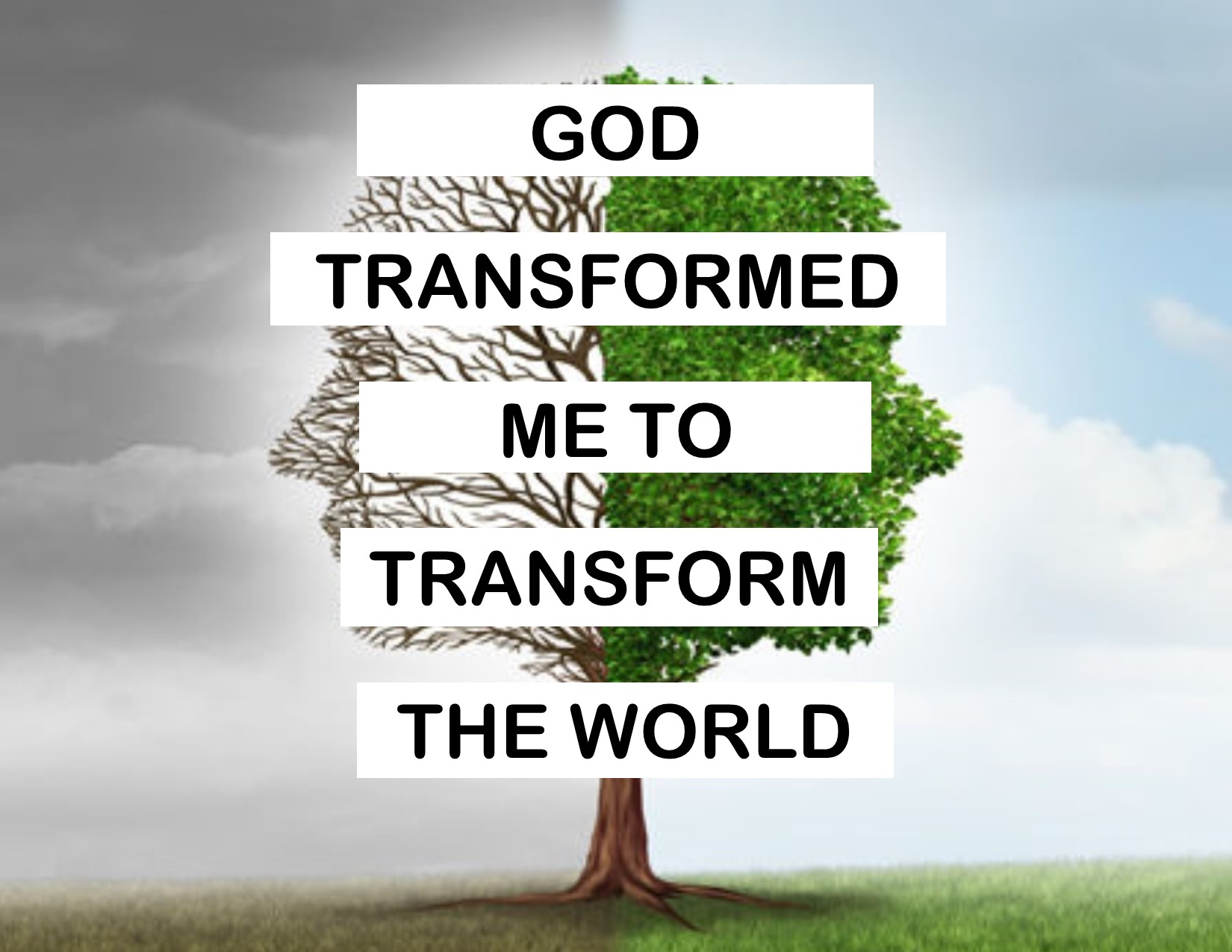 Current Sermon Series: Transformed