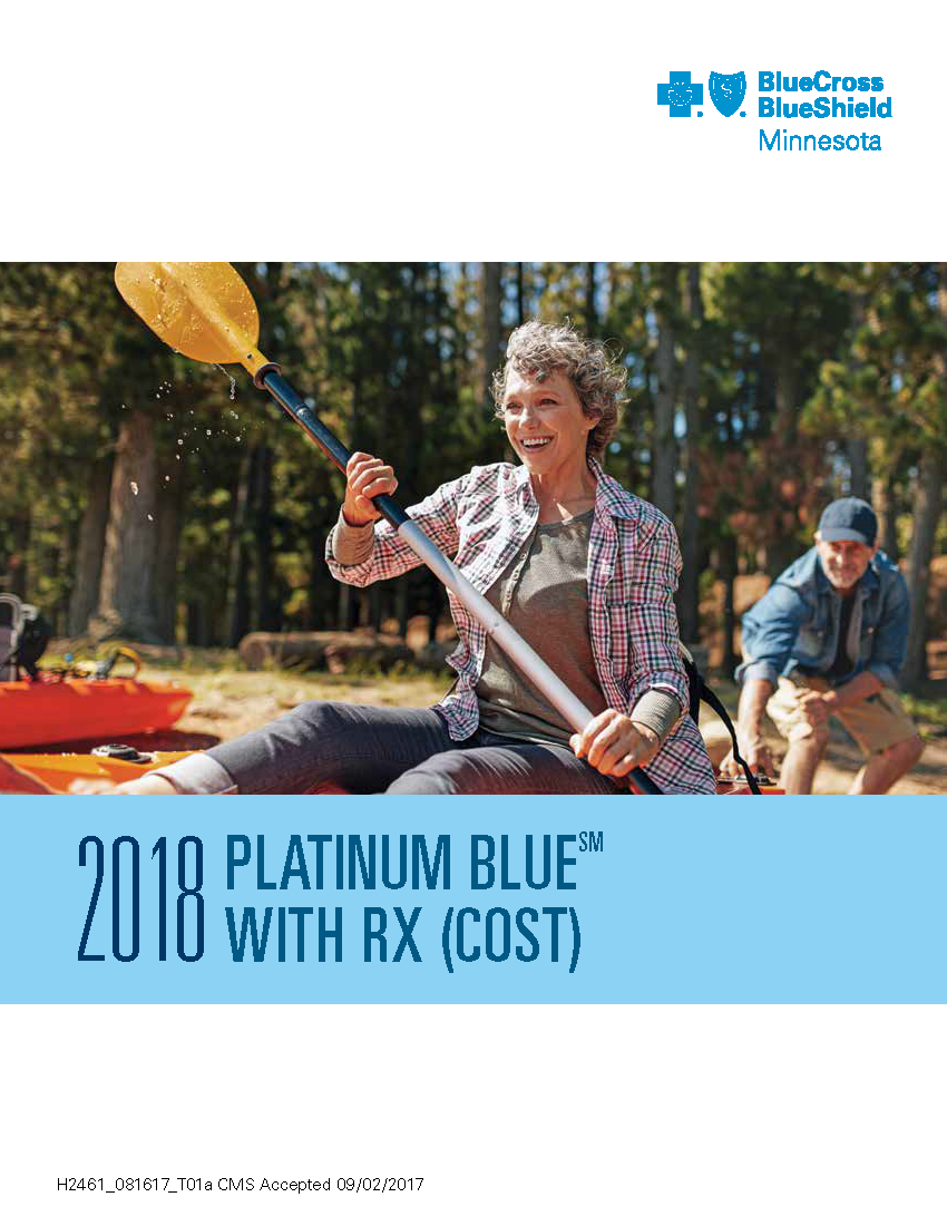 2018 PlatinumBlue Overview M00414_Web_508_Page_1.png