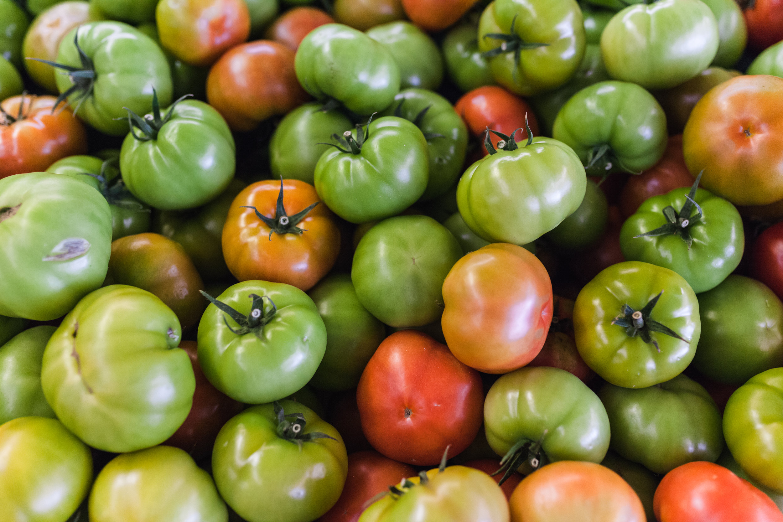 ranchmarket-tomatoes-1.jpg