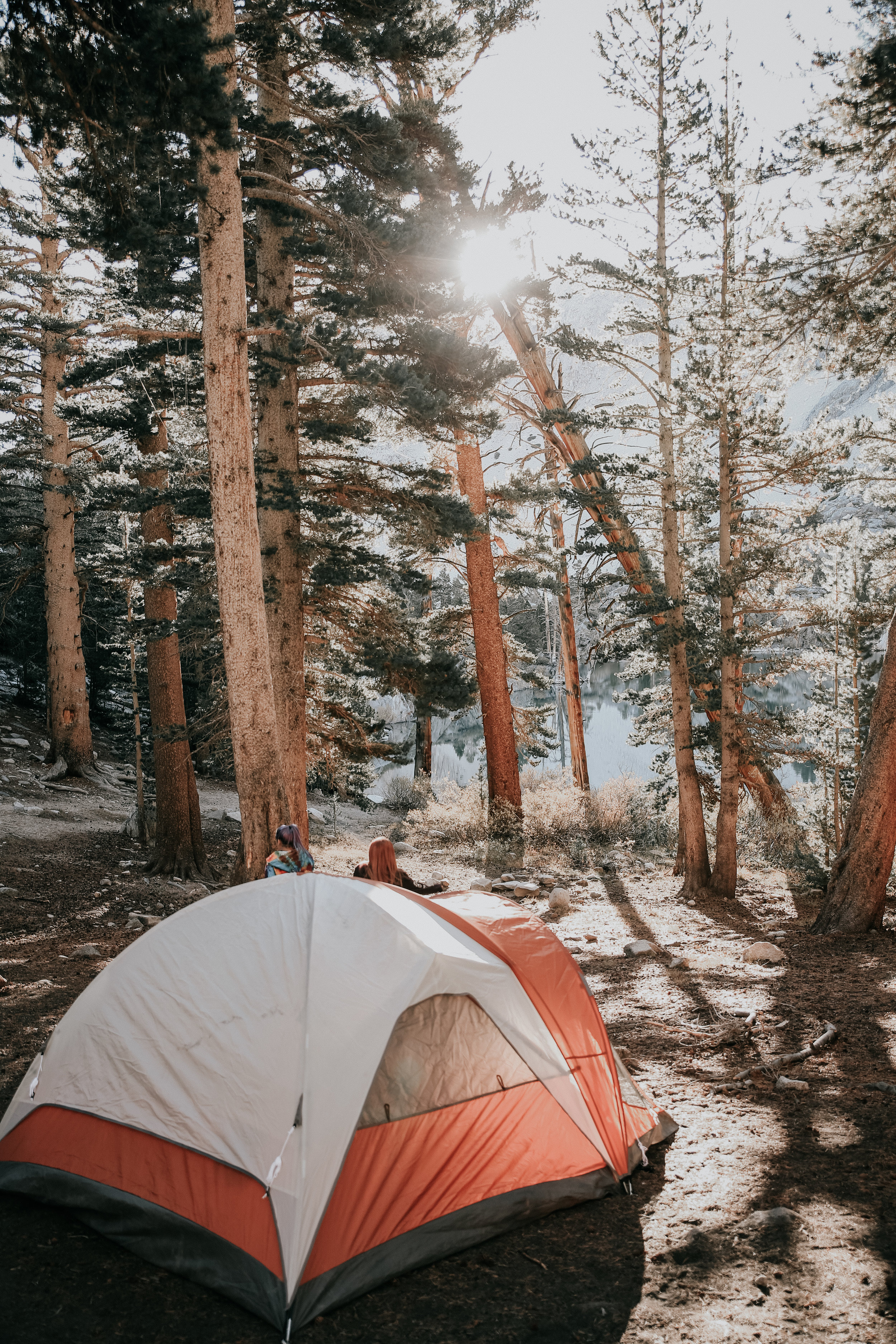 Tent camping - Sierra National Forest