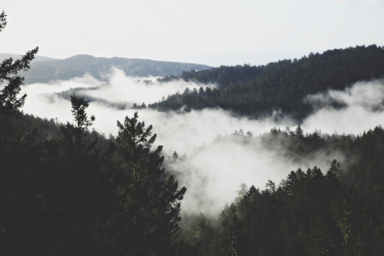 southerncaliforniaweddingphotography.jpg