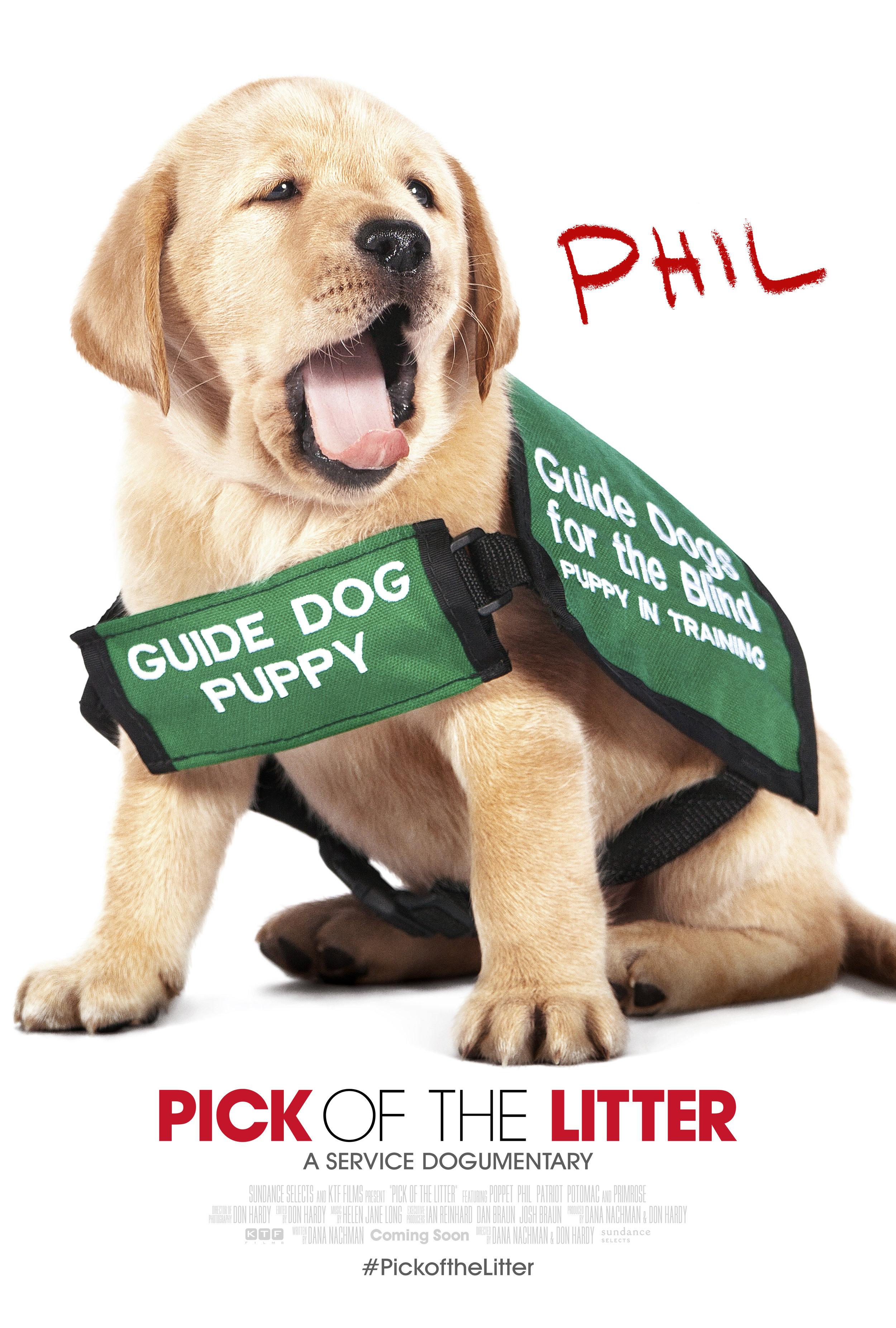POTL_CharacterBanner_Phil_FM1.jpg