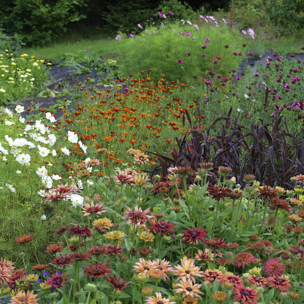 Garden Heaven Summer HR_0008.jpg