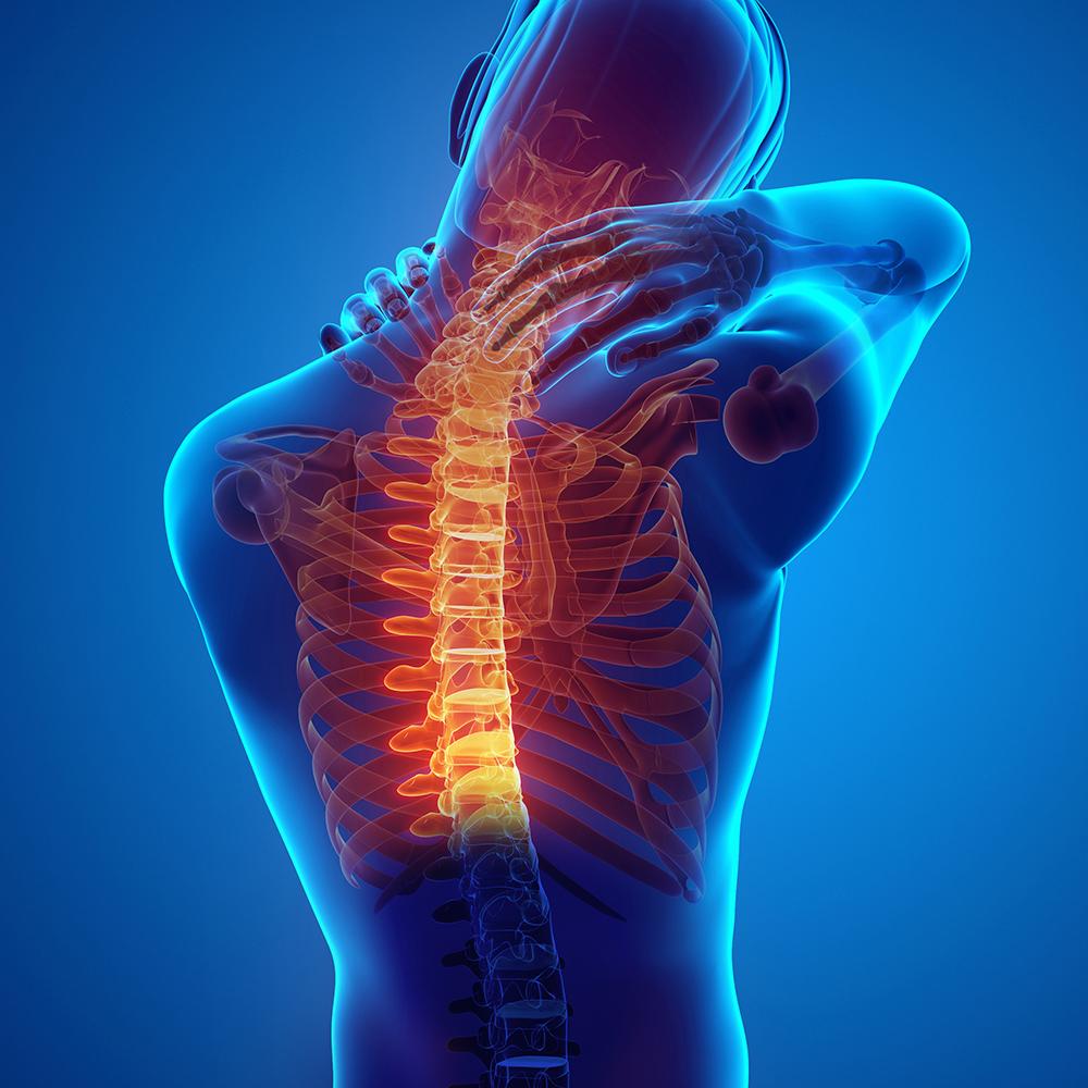 cityphysio-symptoms-midback-thoracicspine.jpg