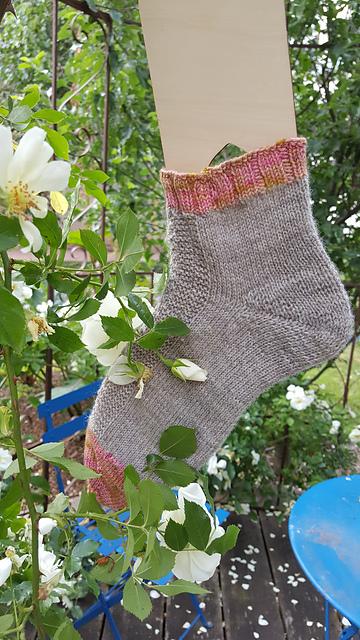 Une chaussette dans un rosier d'Aurora Knitting Designs