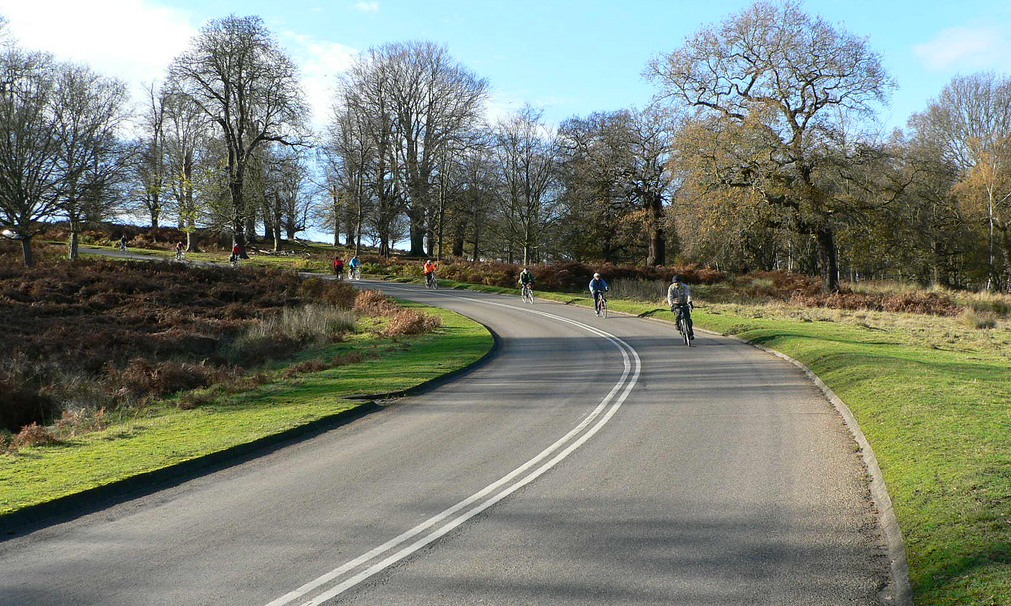 Each month, we are emailing a bulletin to everyone who has signed up on this site. Below is last month's mailout. If you like it, please sign up on our  Get Involved  section – you will be showing your support for our work and you will receive future bulletins a month before they appear here.    Hello, and welcome to Richmond Park Cyclists' inaugural bulletin!     Firstly, thanks for your patience. As you are one of the scores of people who have signed up on our website, you have probably asked yourself what we have been up to. The answer is, quite a bit. We've set up a not-for-profit bank account with three of us as trustees, making our organisation a little bit more official. And following the publication of The Royal Parks' draft report into traffic levels, and subsequent meetings with park stakeholders, we have decided to promote a clear, sensible idea to improve visitors' experience of Richmond Park.    The idea is   Intelligent Road Charging  . We believe it will complement the park's status as a National Nature Reserve, help promote it as a space for public recreation and sport (which are among the charitable objectives of The Royal Parks) and benefit every user. For all these reasons, we hope you will want to get behind it.    If you like the idea of Intelligent Road Charging, please forward this email to anyone - cyclists and non-cyclists - you think might be interested in supporting it. But before you do that, you will probably want to know more about the concept. So here's some background to Richmond Park's relationship with cyclists and the events that led to us forming Richmond Park Cyclists.    HOW WE BEGAN    Richmond Park is run by The Royal Parks. This charitable body regularly consults with stakeholder groups that represent the diverse types of park users and the Metropolitan Police. These meetings help shape the way The Royal Parks runs Richmond Park.    For years, The Royal Parks and the Met have sought ways of improving how they communicate with